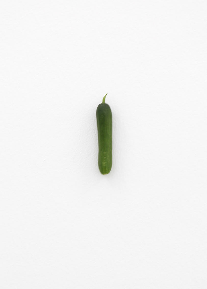 "<span class=""link fancybox-details-link""><a href=""/exhibitions/152/works/artworks12726/"">View Detail Page</a></span><div class=""artist""><strong>KARIN SANDER</strong></div><div class=""title""><em>Mini cucumber (Kitchen Pieces)</em>, 2011 / 2016</div><div class=""medium"">mini cucumber, steel nail</div>"