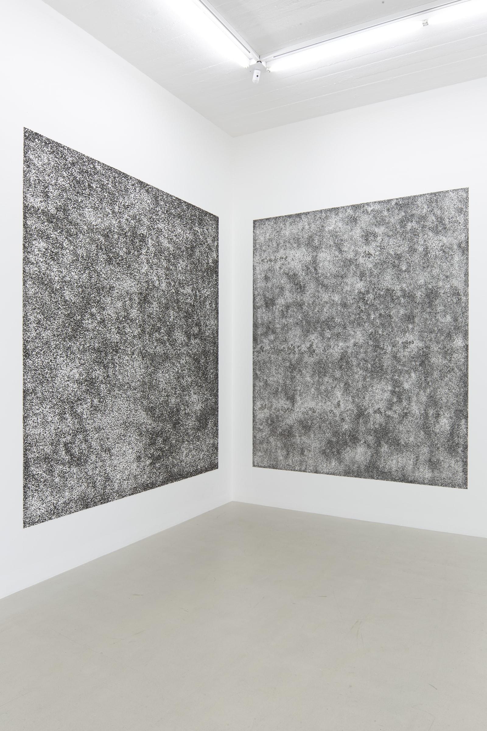 """<span class=""""link fancybox-details-link""""><a href=""""/exhibitions/185/works/artworks17781/"""">View Detail Page</a></span><div class=""""artist""""><strong>RAGNA RÓBERTSDÓTTIR</strong></div><div class=""""title""""><em>Lava Landscape</em>, 2021</div><div class=""""medium"""">black lava from Hekla, course and fine</div><div class=""""dimensions"""">Coarse lava: 300 x 250 cm,<br>Fine lava: 300 x 250 cm,<br>Coarse lava: 118 1/8 x 98 3/8 in<br>Fine lava: 118 1/8 x 98 3/8 in<br></div>"""