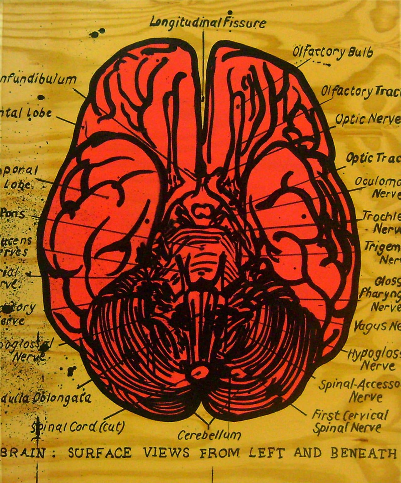 <span class=&#34;link fancybox-details-link&#34;><a href=&#34;/artists/73-sascha-%26-tashi-stylianou/works/3181-sascha-tashi-stylianou-pink-brain-2015/&#34;>View Detail Page</a></span><div class=&#34;artist&#34;><strong>Sascha & Tashi Stylianou</strong></div> <div class=&#34;title&#34;><em>Pink Brain</em>, 2015</div> <div class=&#34;medium&#34;>Mixed Media On Reclaimed Pressed Pine </div> <div class=&#34;dimensions&#34;>101cm x 122cm</div><div class=&#34;price&#34;>R10,000.00</div>