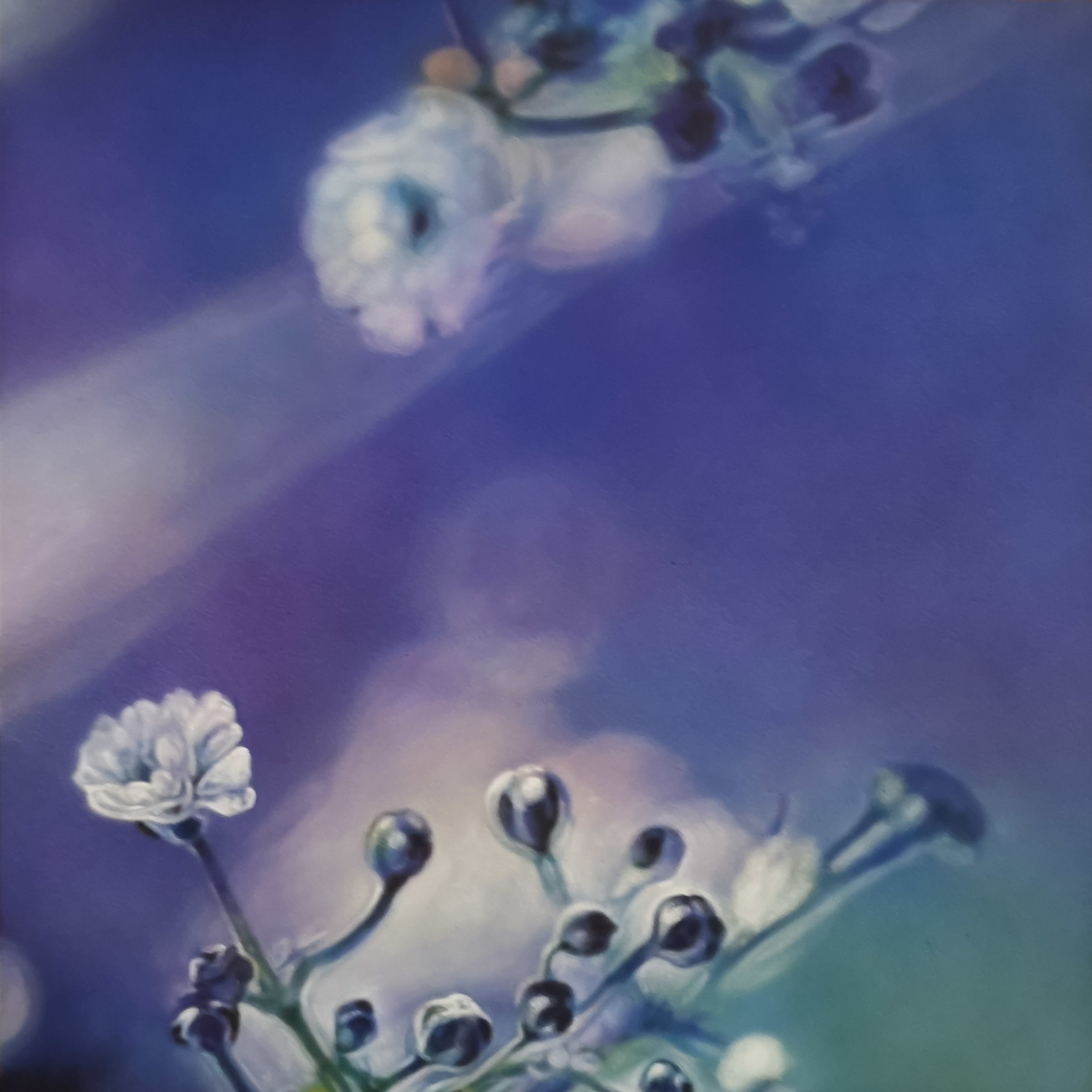 <span class=&#34;link fancybox-details-link&#34;><a href=&#34;/artists/73-sascha-%26-tashi-stylianou/works/1216-sascha-tashi-stylianou-floral-happiness-4-2018/&#34;>View Detail Page</a></span><div class=&#34;artist&#34;><strong>Sascha & Tashi Stylianou</strong></div> <div class=&#34;title&#34;><em>Floral Happiness 4</em>, 2018</div> <div class=&#34;medium&#34;>Acrylic In Brush & Spray On Canvas</div> <div class=&#34;dimensions&#34;>100cm x 100cm</div><div class=&#34;price&#34;>R10,000.00</div>