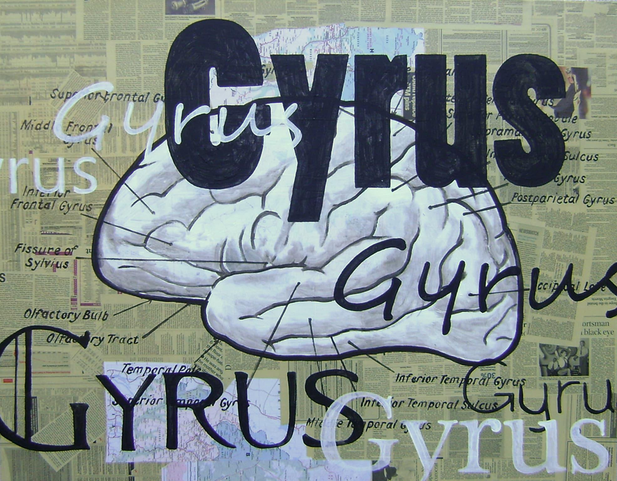 <span class=&#34;link fancybox-details-link&#34;><a href=&#34;/artists/73-sascha-%26-tashi-stylianou/works/3067-sascha-tashi-stylianou-gyrus-2015/&#34;>View Detail Page</a></span><div class=&#34;artist&#34;><strong>Sascha & Tashi Stylianou</strong></div> <div class=&#34;title&#34;><em>Gyrus</em>, 2015</div> <div class=&#34;medium&#34;>Mixed Media On Canvas</div> <div class=&#34;dimensions&#34;>101.5cm x 128cm</div><div class=&#34;price&#34;>R12,500.00</div>