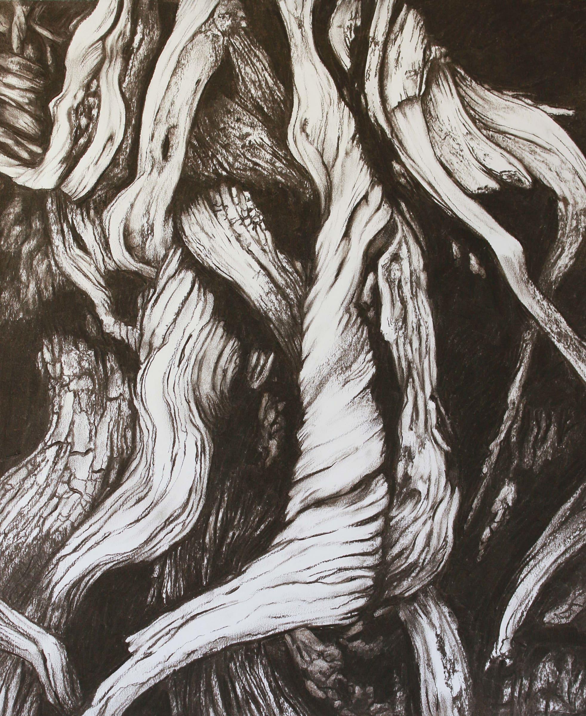 <span class=&#34;link fancybox-details-link&#34;><a href=&#34;/artists/71-leonora-venter/works/3042-leonora-venter-driftwood-v-2018/&#34;>View Detail Page</a></span><div class=&#34;artist&#34;><strong>Leonora Venter</strong></div> <div class=&#34;title&#34;><em>Driftwood V</em>, 2018</div> <div class=&#34;medium&#34;>Charcoal On Paper</div> <div class=&#34;dimensions&#34;>60cm x 50cm</div><div class=&#34;price&#34;>R4,000.00</div>
