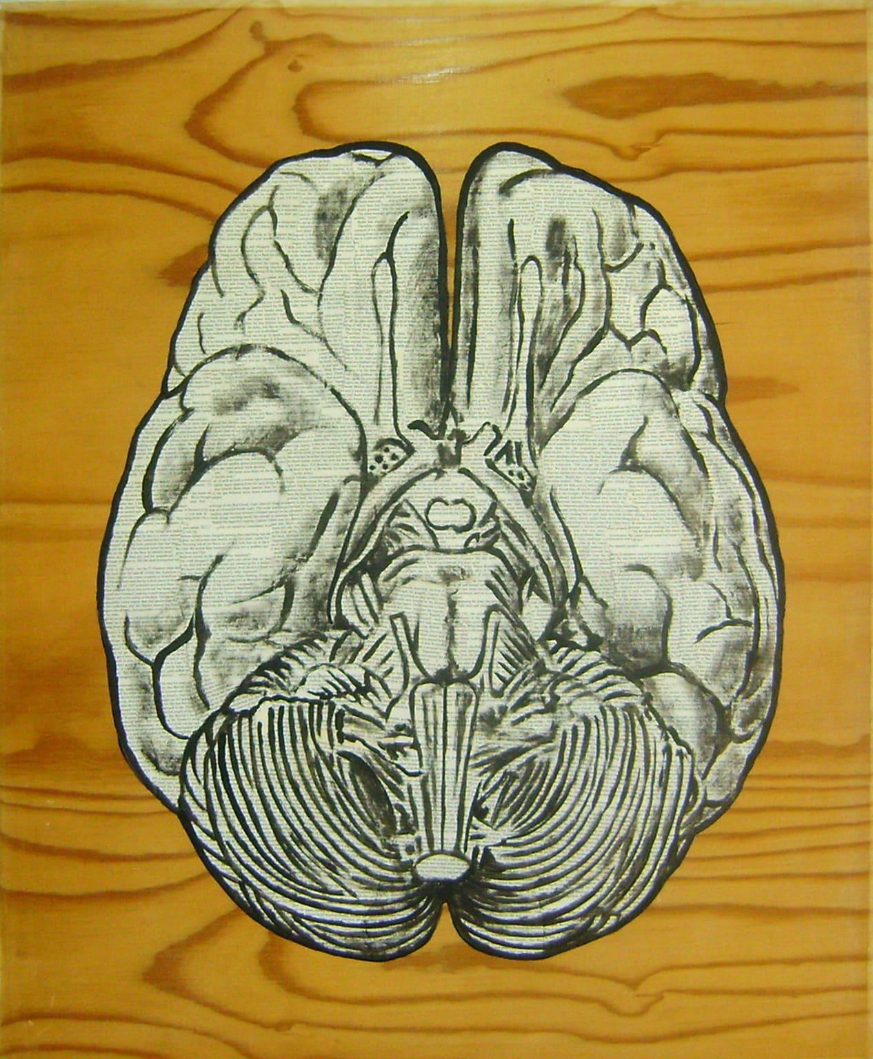 <span class=&#34;link fancybox-details-link&#34;><a href=&#34;/artists/73-sascha-%26-tashi-stylianou/works/3178-sascha-tashi-stylianou-brain-two-2015/&#34;>View Detail Page</a></span><div class=&#34;artist&#34;><strong>Sascha & Tashi Stylianou</strong></div> <div class=&#34;title&#34;><em>Brain Two</em>, 2015</div> <div class=&#34;medium&#34;>Mixed Media On Reclaimed Pressed Pine </div> <div class=&#34;dimensions&#34;>100cm x 122cm</div><div class=&#34;price&#34;>R8,000.00</div>