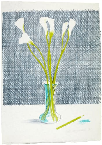 """<span class=""""link fancybox-details-link""""><a href=""""/artists/43-david-hockney/works/272-david-hockney-lilies-1971/"""">View Detail Page</a></span><div class=""""artist""""><strong>David Hockney</strong></div> 1937 <div class=""""title""""><em>Lilies</em>, 1971</div> <div class=""""signed_and_dated"""">signed and dated in pencil, numbered XXXII/XXXV (aside from the edition of 65)</div> <div class=""""medium"""">Lithograph printed in colours on Japon nacré paper</div> <div class=""""dimensions"""">29 3/4 x 20 7/8 in<br /> 75.5 x 53 cm</div> <div class=""""edition_details"""">numbered XXXII/XXXV (aside from the edition of 65)</div>"""