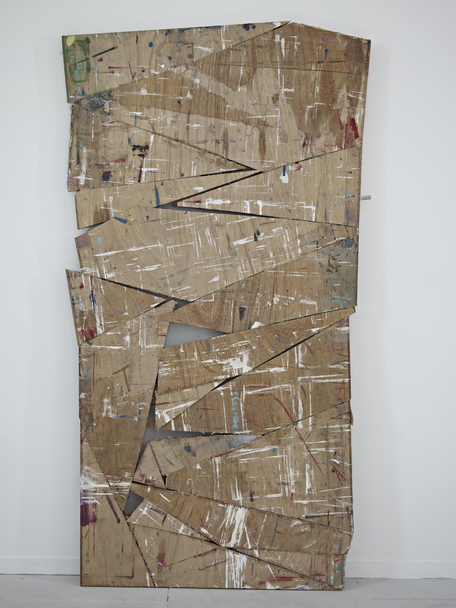 <span class=&#34;link fancybox-details-link&#34;><a href=&#34;/artists/16-paul-merrick/works/8111/&#34;>View Detail Page</a></span><div class=&#34;artist&#34;><strong>Paul Merrick</strong></div> <div class=&#34;title&#34;><em>Untitled (Studio Door)</em>, 2013</div> <div class=&#34;medium&#34;>Door, oil paint, turps, primer, glue</div> <div class=&#34;dimensions&#34;>164 x 84 cm<br />64 5/8 x 33 1/8 in</div><div class=&#34;copyright_line&#34;>Copyright The Artist</div>