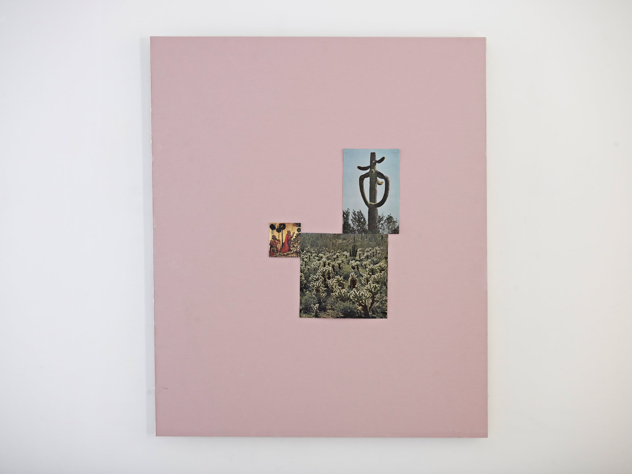 <span class=&#34;link fancybox-details-link&#34;><a href=&#34;/artists/16-paul-merrick/works/8248/&#34;>View Detail Page</a></span><div class=&#34;artist&#34;><strong>Paul Merrick</strong></div> <div class=&#34;title&#34;><em>Untitled (Cacti God)</em>, 2013</div> <div class=&#34;medium&#34;>Fire proof plasterboard, found image, dressmaker pins</div> <div class=&#34;dimensions&#34;>100 x 120 cm<br />39 3/8 x 47 1/4 in</div><div class=&#34;copyright_line&#34;>Copyright The Artist</div>