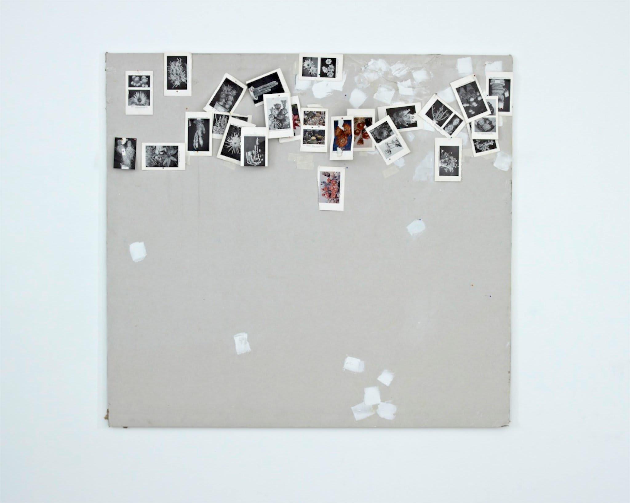 <span class=&#34;link fancybox-details-link&#34;><a href=&#34;/artists/16-paul-merrick/works/8120/&#34;>View Detail Page</a></span><div class=&#34;artist&#34;><strong>Paul Merrick</strong></div> <div class=&#34;title&#34;>Untitled, 2013</div> <div class=&#34;medium&#34;>Plasterboard, filler, masking tape, found images, dress maker pins</div> <div class=&#34;dimensions&#34;>120 x 130 cm<br />47 1/4 x 51 1/8 in</div><div class=&#34;copyright_line&#34;>Copyright The Artist</div>
