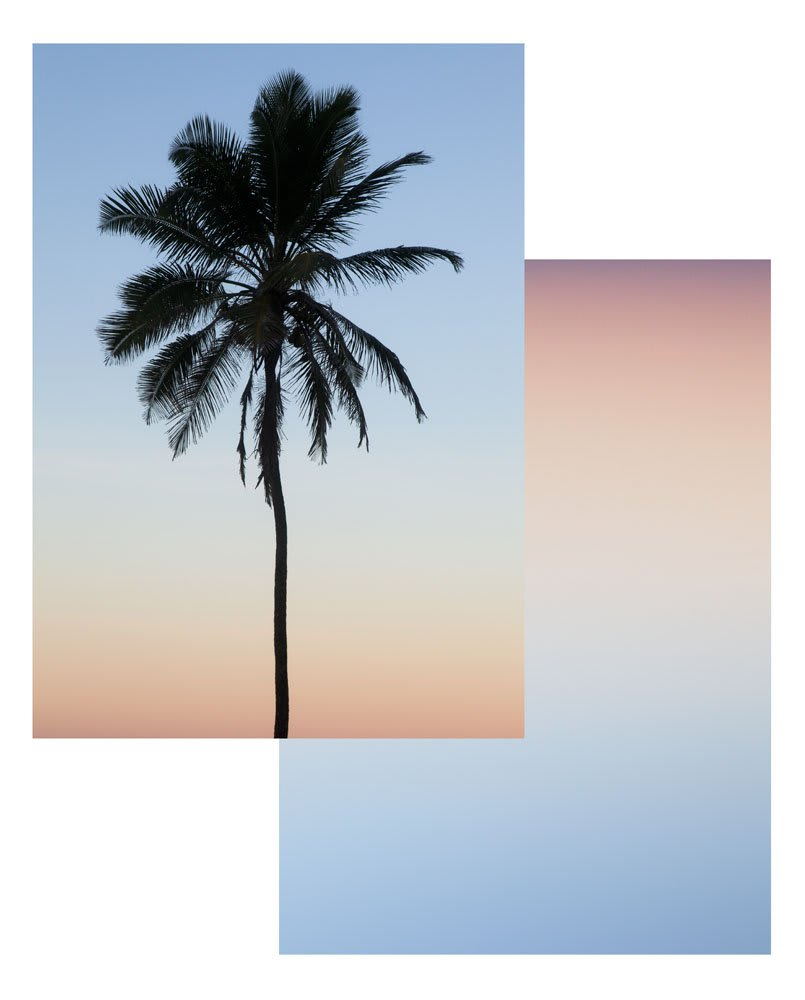 "<span class=""link fancybox-details-link""><a href=""/artists/32-joe-clark/works/7580-joe-clark-a-tree.-a-sunset-2012/"">View Detail Page</a></span><div class=""artist""><strong>Joe Clark</strong></div> <div class=""title""><em>A Tree. A Sunset</em>, 2012</div> <div class=""medium"">Fujiflex C-type prints, Magnets</div> <div class=""dimensions"">237 x 193 cm<br />93 1/4 x 76 in</div> <div class=""edition_details"">edition of 1 plus 1 artist's proofs</div><div class=""copyright_line"">Copyright The Artist</div>"