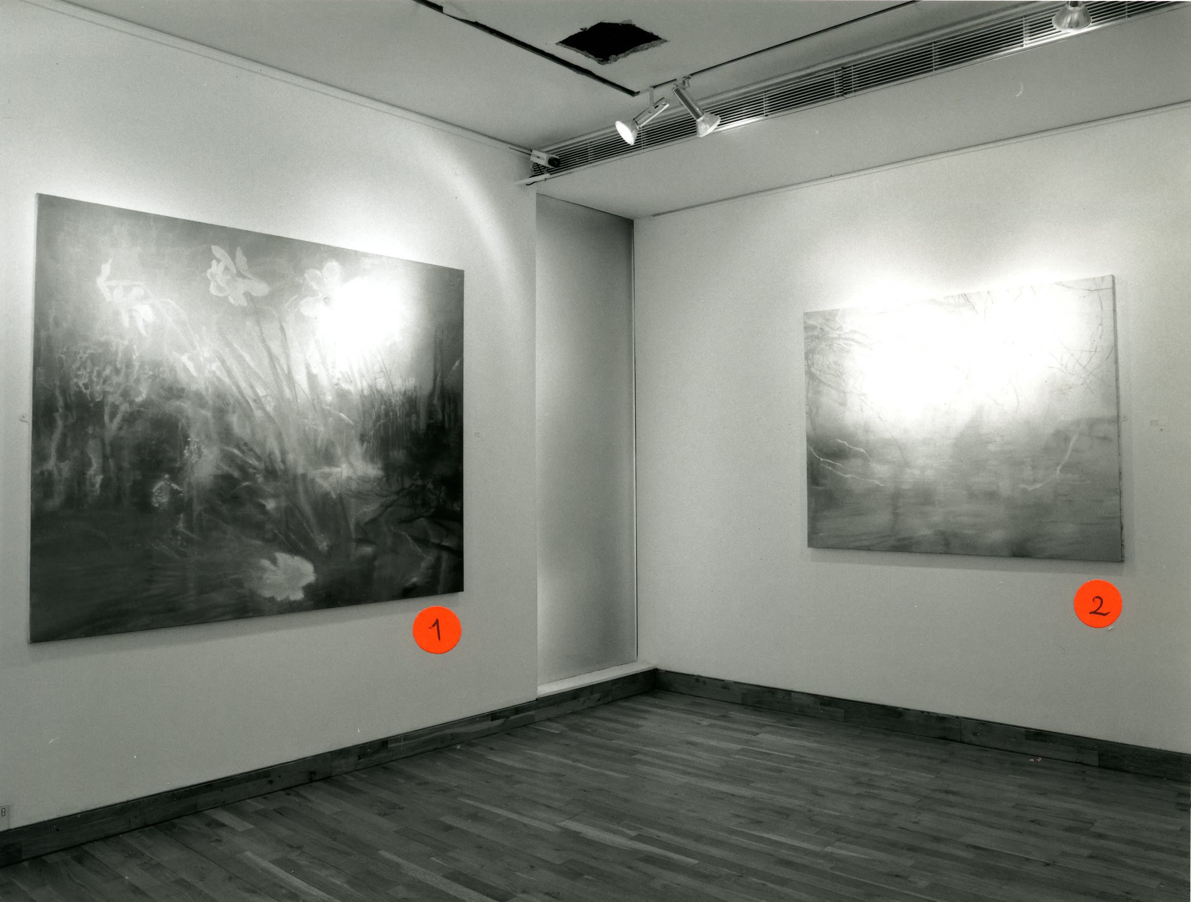"""<span class=""""link fancybox-details-link""""><a href=""""/exhibitions/157/works/image_standalone684/"""">View Detail Page</a></span><p>MARINA KARELLA 