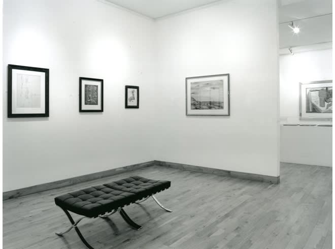 """<span class=""""link fancybox-details-link""""><a href=""""/exhibitions/178/works/image_standalone803/"""">View Detail Page</a></span><p>WORKS ON PAPER   15 JUN - 31 AUG 1996   Installation View</p>"""