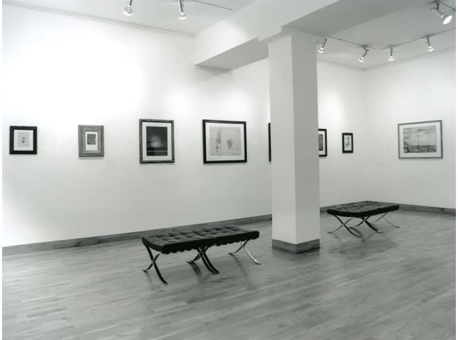 """<span class=""""link fancybox-details-link""""><a href=""""/exhibitions/178/works/image_standalone804/"""">View Detail Page</a></span><p>WORKS ON PAPER   15 JUN - 31 AUG 1996   Installation View</p>"""