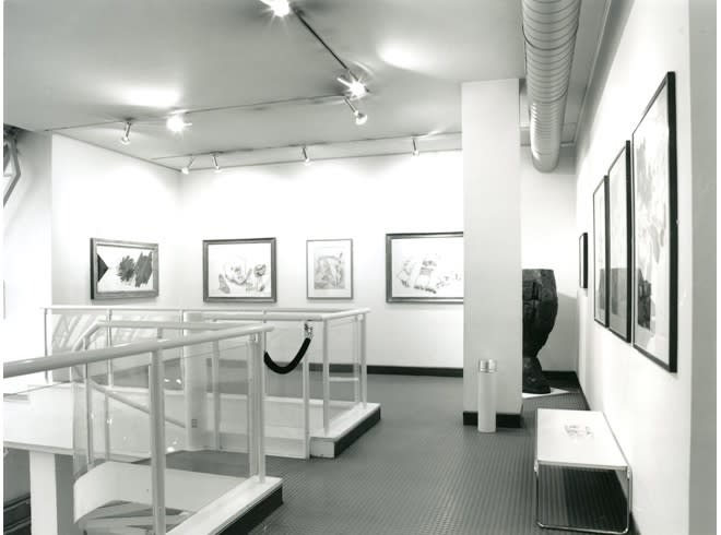 """<span class=""""link fancybox-details-link""""><a href=""""/exhibitions/178/works/image_standalone805/"""">View Detail Page</a></span><p>WORKS ON PAPER   15 JUN - 31 AUG 1996   Installation View</p>"""