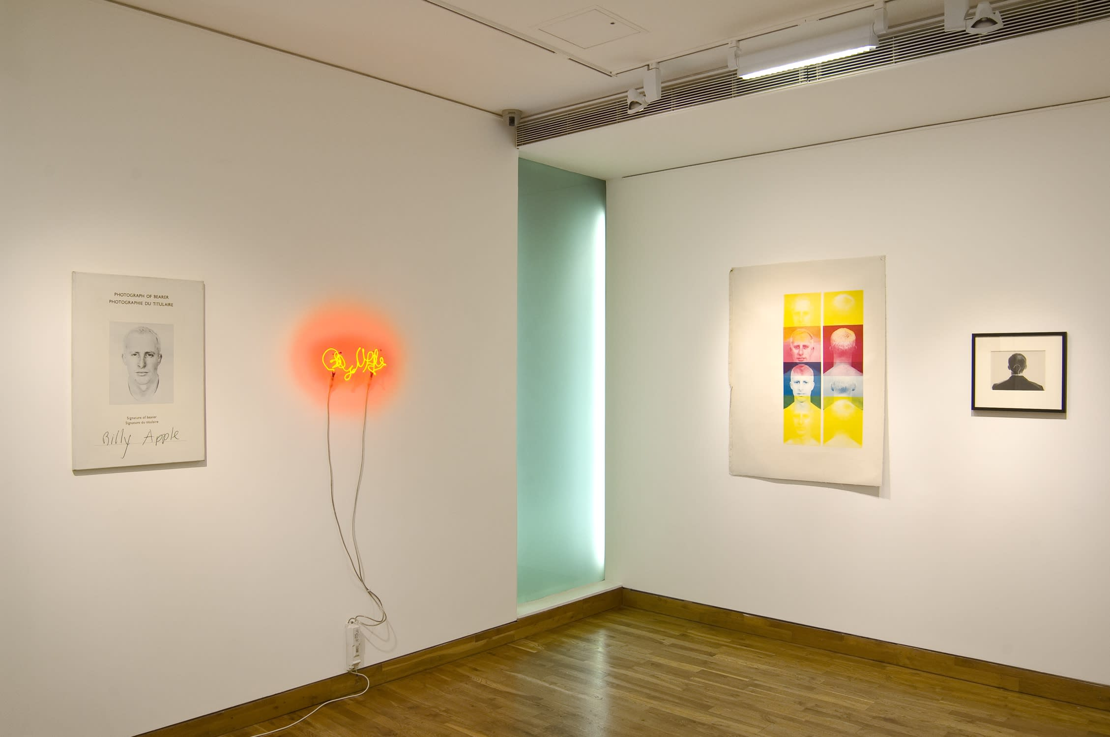 """<span class=""""link fancybox-details-link""""><a href=""""/exhibitions/83/works/image_standalone248/"""">View Detail Page</a></span><p>BILLY APPLE   BRITISH & AMERICAN WORKS 1960 - 1969   16 SEP - 30 OCT 2010   Installation View</p>"""