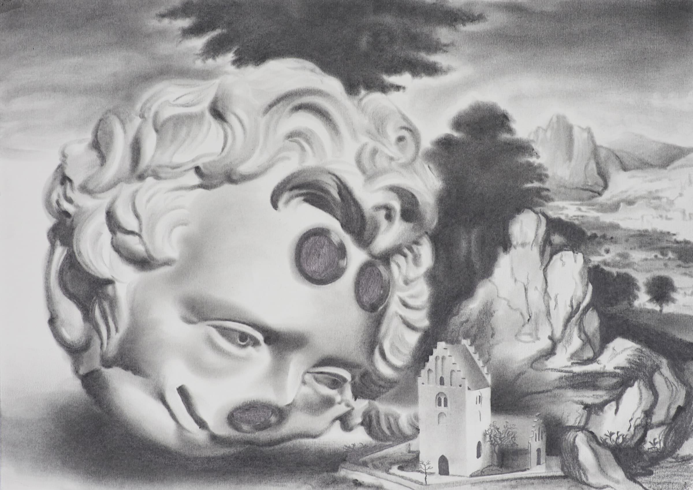 <span class=&#34;link fancybox-details-link&#34;><a href=&#34;/exhibitions/98/works/image2081/&#34;>View Detail Page</a></span><div id=&#34;artwork-panel-details&#34; class=&#34;standard-artwork-details&#34;><div class=&#34;artist&#34;><strong>Robert McNally</strong></div><div class=&#34;title&#34;><em>Does whatever her wants</em>, 2017</div><div class=&#34;medium&#34;>Graphite on paper</div><div class=&#34;dimensions&#34;>30 x 42 cm<br /> 11 3/4 x 16 1/2 in</div></div>