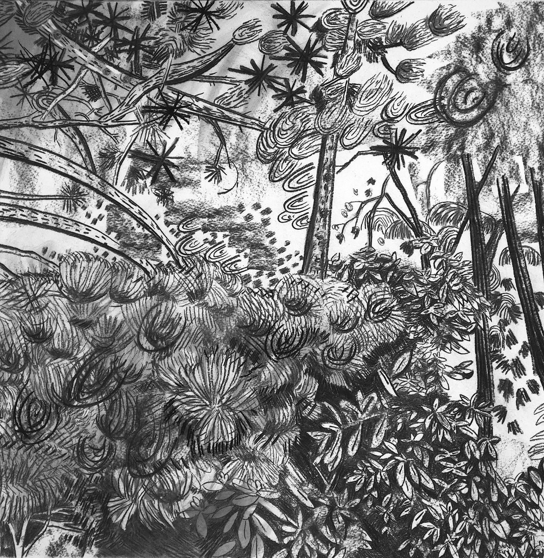 <span class=&#34;link fancybox-details-link&#34;><a href=&#34;/artists/51-florentine-%26-alexandre-lamarche-ovize/works/9584/&#34;>View Detail Page</a></span><div class=&#34;artist&#34;><strong>Florentine & Alexandre LAMARCHE-OVIZE</strong></div> <div class=&#34;title&#34;><em>Laeken</em>, 2018</div> <div class=&#34;medium&#34;>Charcoal on paper</div> <div class=&#34;dimensions&#34;>65 x 65 cm<br /> 25 5/8 x 25 5/8 in</div><div class=&#34;copyright_line&#34;>Copyright The Artist</div>