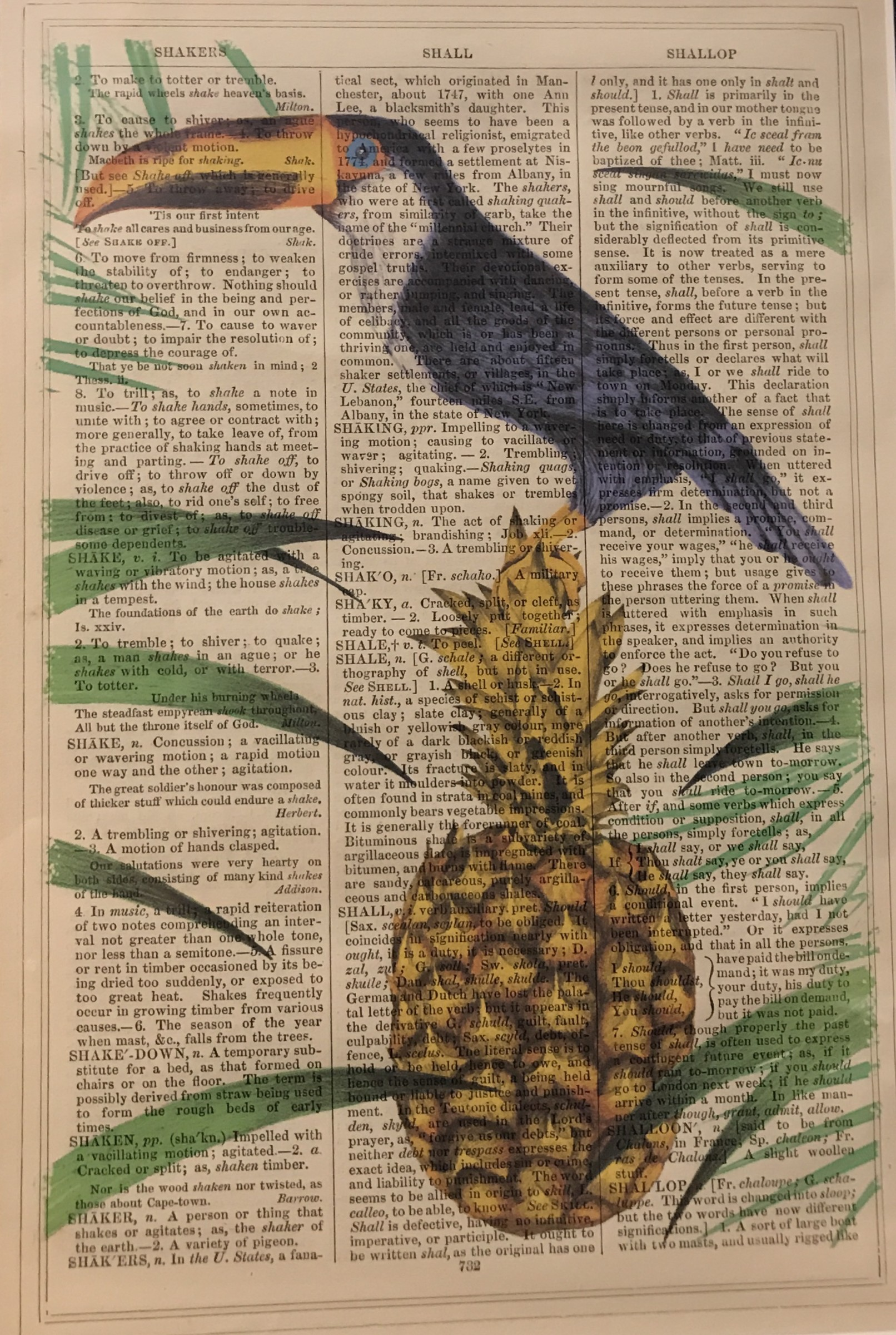 "<span class=""link fancybox-details-link""><a href=""/artists/203-framed-prints/works/106-framed-prints-toucan-pineapple/"">View Detail Page</a></span><div class=""artist""><strong>Framed Prints</strong></div> Framed Prints <div class=""title""><em>Toucan Pineapple</em></div> <div class=""medium"">Vintage Dictionary Print</div> <div class=""dimensions"">25 x 16 cm</div> <div class=""edition_details""></div><div class=""price"">£20.83</div>"