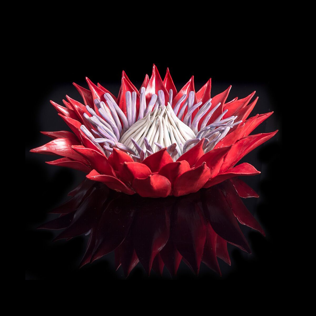"<span class=""link fancybox-details-link""><a href=""/artists/51-frances-doherty/works/2152-frances-doherty-red-and-lilac-protea-with-blue-glass/"">View Detail Page</a></span><div class=""artist""><strong>Frances Doherty</strong></div> <div class=""title""><em>Red and Lilac Protea with Blue Glass</em></div> <div class=""medium"">Glazed Stoneware </div> <div class=""dimensions"">14h x 42dia. cm</div><div class=""price"">£1,400.00</div><div class=""copyright_line"">Copyright The Artist</div>"
