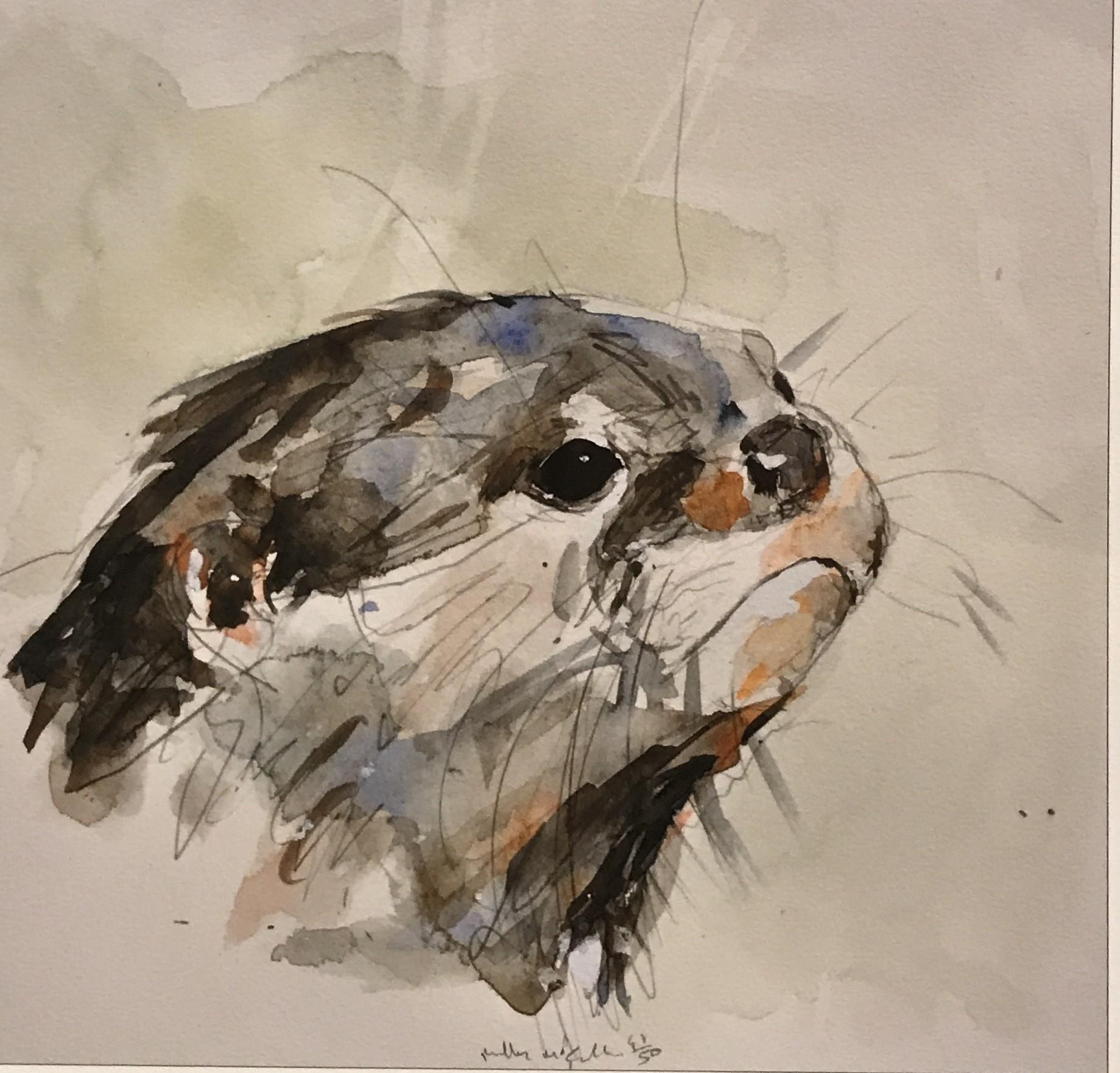 <span class=&#34;link fancybox-details-link&#34;><a href=&#34;/artists/39-millie-mccallum/works/154-millie-mccallum-otter/&#34;>View Detail Page</a></span><div class=&#34;artist&#34;><strong>Millie McCallum</strong></div> <div class=&#34;title&#34;><em>Otter</em></div> <div class=&#34;medium&#34;>Watercolour Print</div> <div class=&#34;dimensions&#34;>20 x 20 cm (paper size)</div> <div class=&#34;edition_details&#34;>40/50</div>