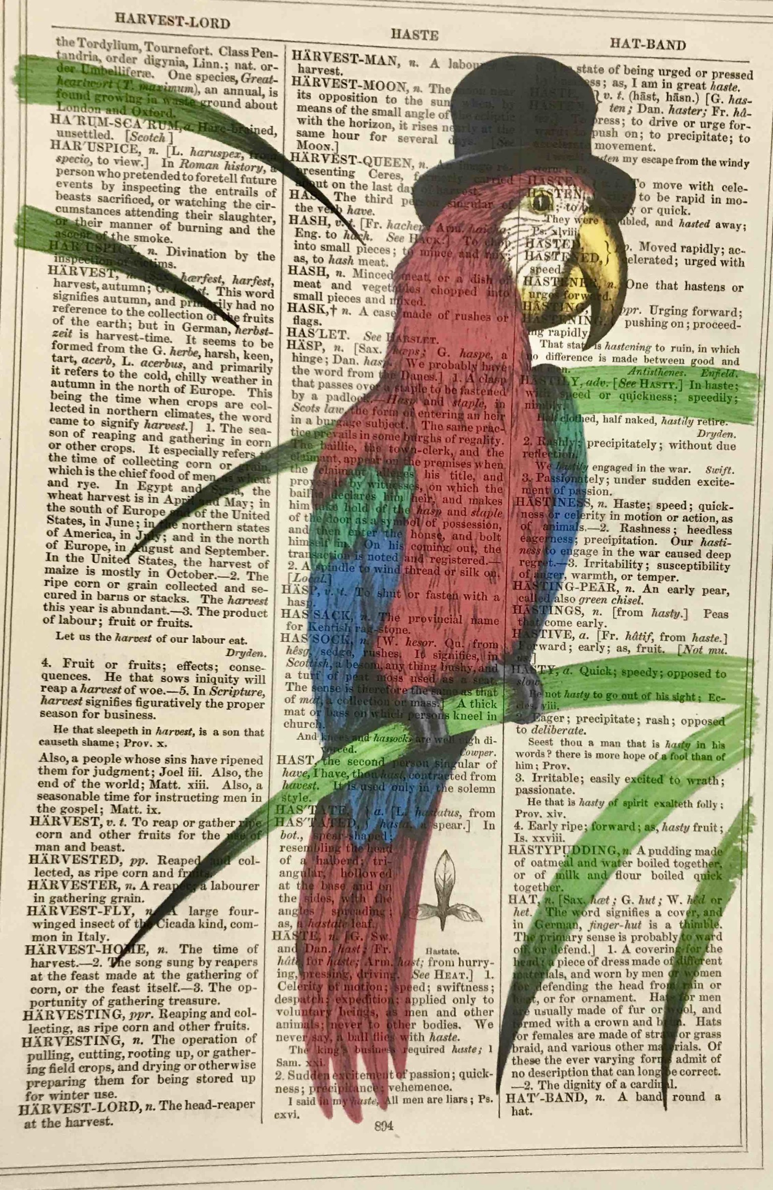 "<span class=""link fancybox-details-link""><a href=""/artists/203-framed-prints/works/3067-framed-prints-top-hat-parrot/"">View Detail Page</a></span><div class=""artist""><strong>Framed Prints</strong></div> <div class=""title""><em>Top Hat Parrot</em></div> <div class=""medium"">Vintage Dictionary Print</div> <div class=""dimensions"">25 x 16 cm </div> <div class=""edition_details""></div><div class=""price"">£20.83</div><div class=""copyright_line"">Copyright The Artist</div>"