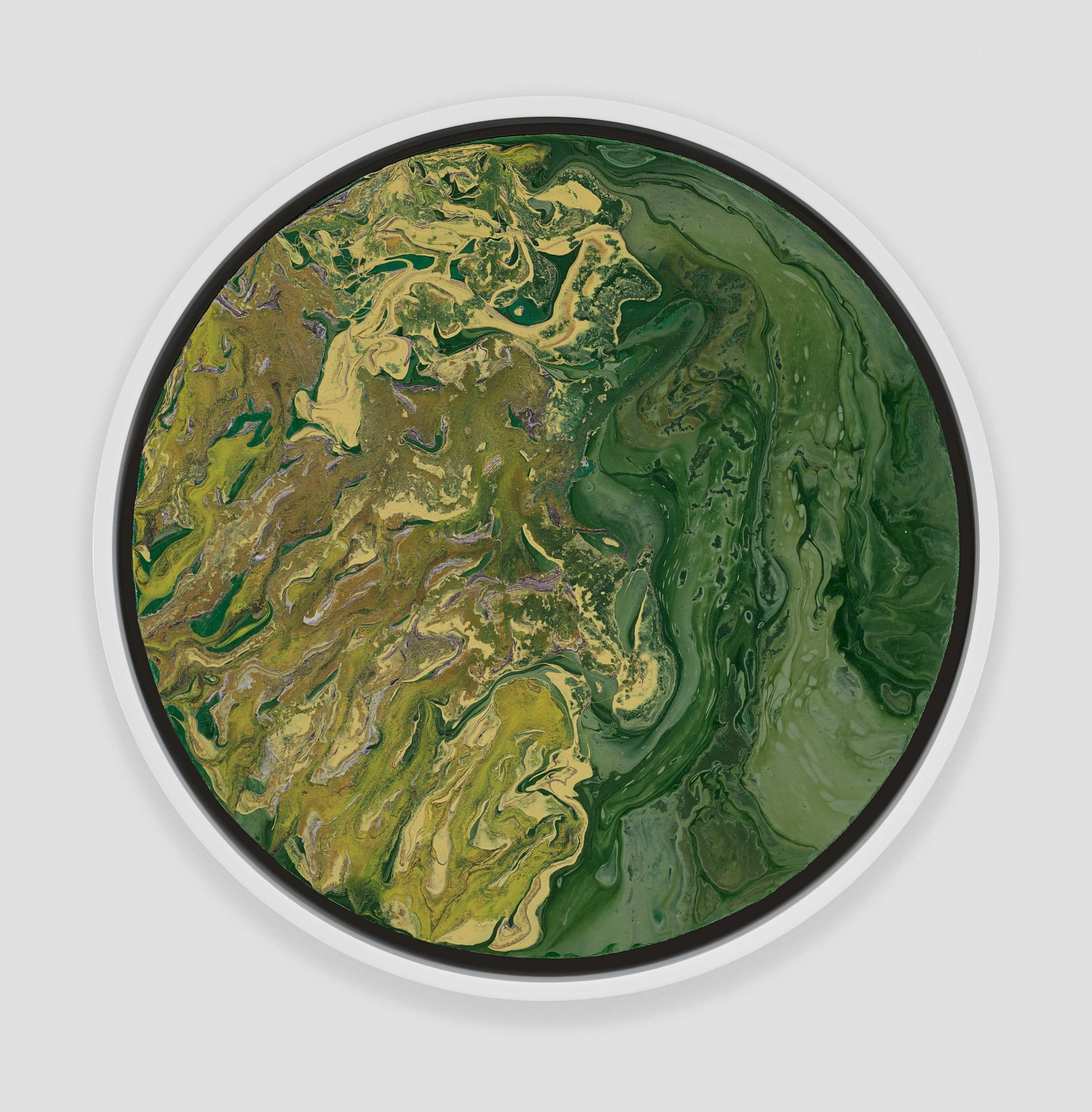 <span class=&#34;link fancybox-details-link&#34;><a href=&#34;/artists/66-elsa-duault/works/4916-elsa-duault-unknown-plant-ii-2017/&#34;>View Detail Page</a></span><div class=&#34;artist&#34;><strong>Elsa Duault</strong></div> 1992  <div class=&#34;title&#34;><em>Unknown plant II</em>, 2017</div> <div class=&#34;medium&#34;>Acrylic on canvas</div> <div class=&#34;dimensions&#34;>40cm diameter<br /> </div><div class=&#34;copyright_line&#34;>Copyright The Artist</div>