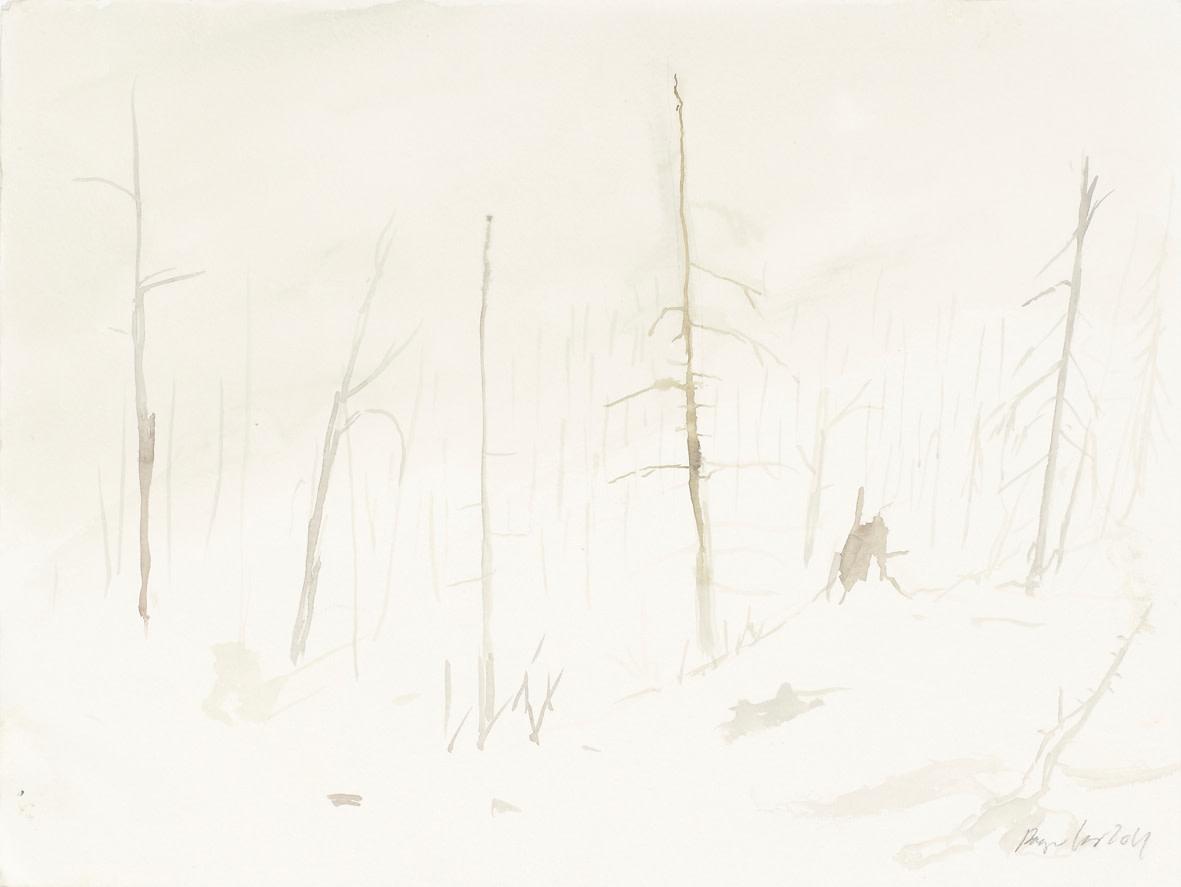 "<span class=""link fancybox-details-link""><a href=""/exhibitions/122/works/artworks8302/"">View Detail Page</a></span><div class=""artist""><strong>RAGNAR KJARTANSSON</strong></div><div class=""title""><em>Af lendum heimshryggðarinnar í Bresku Kólumbíu / From the Valley of World-Weariness in British Columbia (VI)</em>, 2011</div><div class=""signed_and_dated"">signed front, bottom right</div><div class=""medium"">watercolour on paper</div><div class=""dimensions"">Image: 30.5 x 40.5<br>Framed: 38.5 x 48.5</div>"