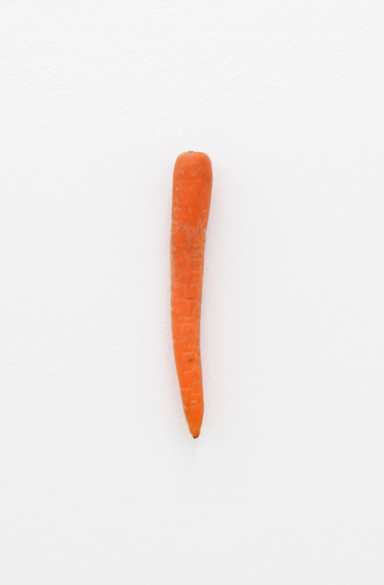 "<span class=""link fancybox-details-link""><a href=""/artists/40-karin-sander/works/12756/"">View Detail Page</a></span><div class=""artist""><strong>KARIN SANDER</strong></div> <div class=""title""><em>Carrot (Kitchen Pieces)</em>, 2011 / 2015</div> <div class=""medium"">carrot, steel nail</div> <div class=""dimensions"">dimensions variable</div>"