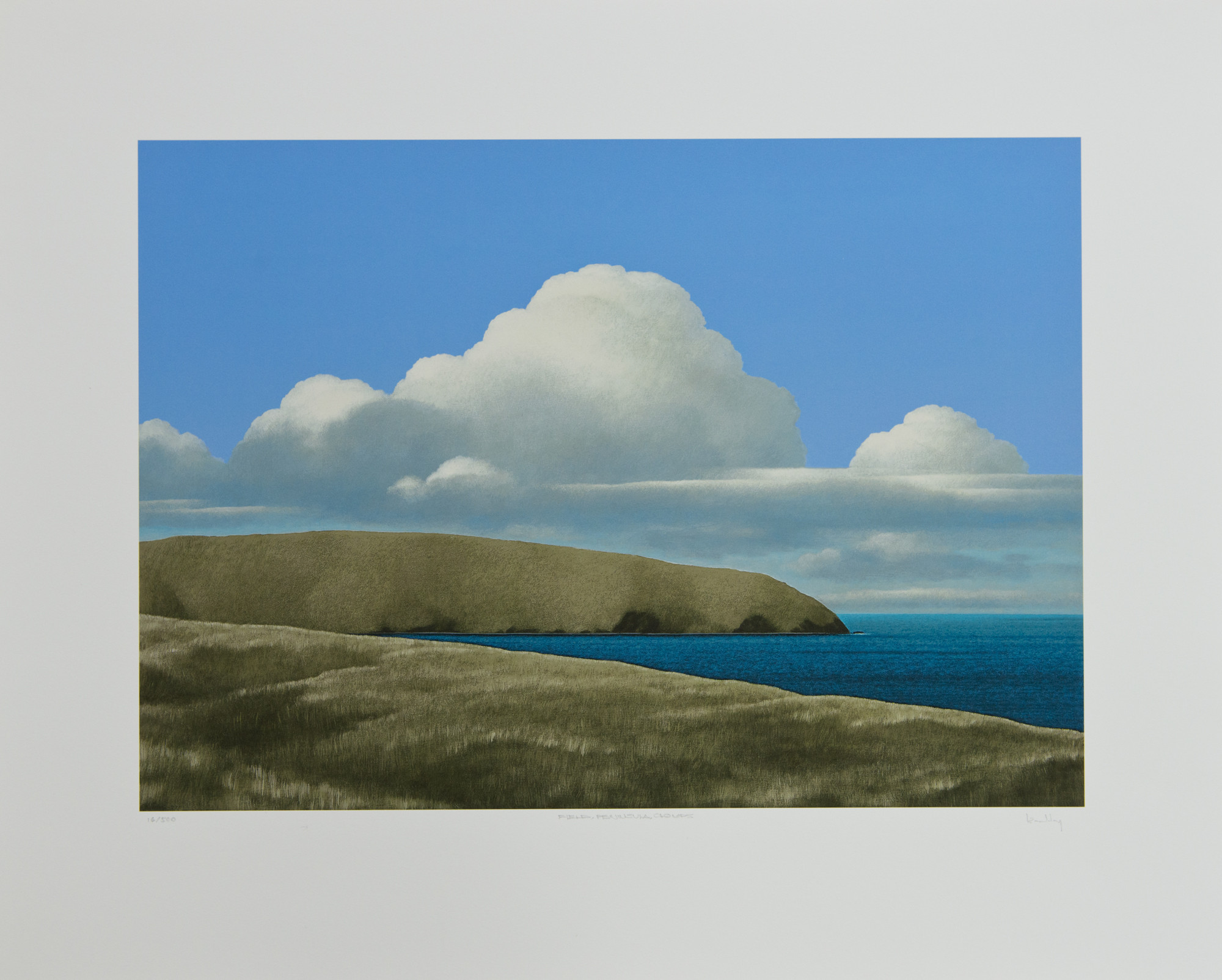 <span class=&#34;link fancybox-details-link&#34;><a href=&#34;/artists/72-brent-wong/works/6816-brent-wong-field-peninsula-clouds-n.d./&#34;>View Detail Page</a></span><div class=&#34;artist&#34;><strong>Brent Wong</strong></div> <div class=&#34;title&#34;><em>Field, Peninsula, Clouds</em>, n.d.</div> <div class=&#34;medium&#34;>Giclee print</div> <div class=&#34;dimensions&#34;>26.8 x 21.5 in<br />68 x 54.5 cm</div> <div class=&#34;edition_details&#34;>#16/500</div>