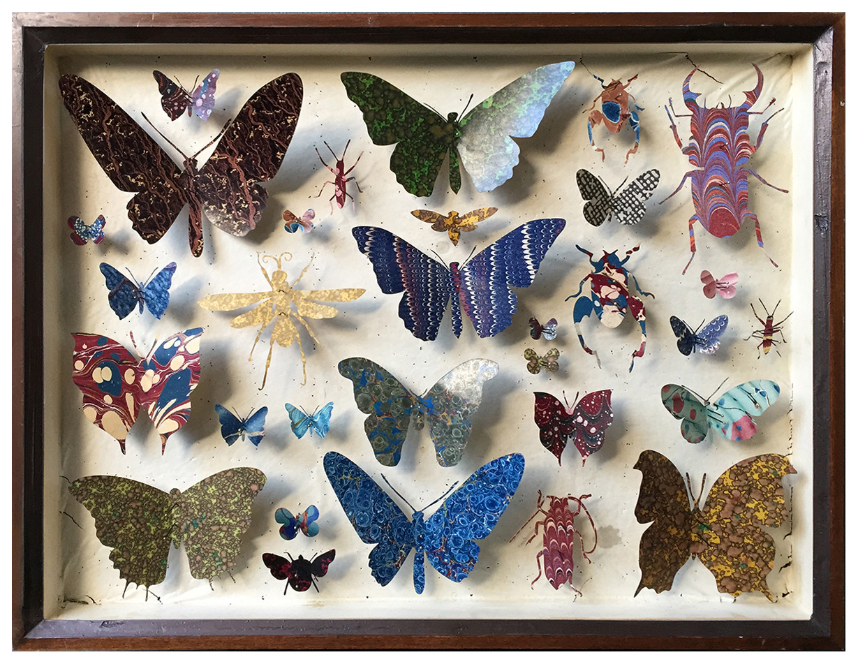 <span class=&#34;link fancybox-details-link&#34;><a href=&#34;/artists/142-helen-ward/works/6237-helen-ward-entomology-case-11-2019/&#34;>View Detail Page</a></span><div class=&#34;artist&#34;><strong>Helen Ward</strong></div> <div class=&#34;title&#34;><em>Entomology Case 11</em>, 2019</div> <div class=&#34;medium&#34;>Victorian entomology drawer, hand-marbled papers, enamel pins</div> <div class=&#34;dimensions&#34;>29 x 39 cm</div><div class=&#34;copyright_line&#34;>Own Art: £ 59.50 x 10 Monthly 0% APR Representative Payments</div>