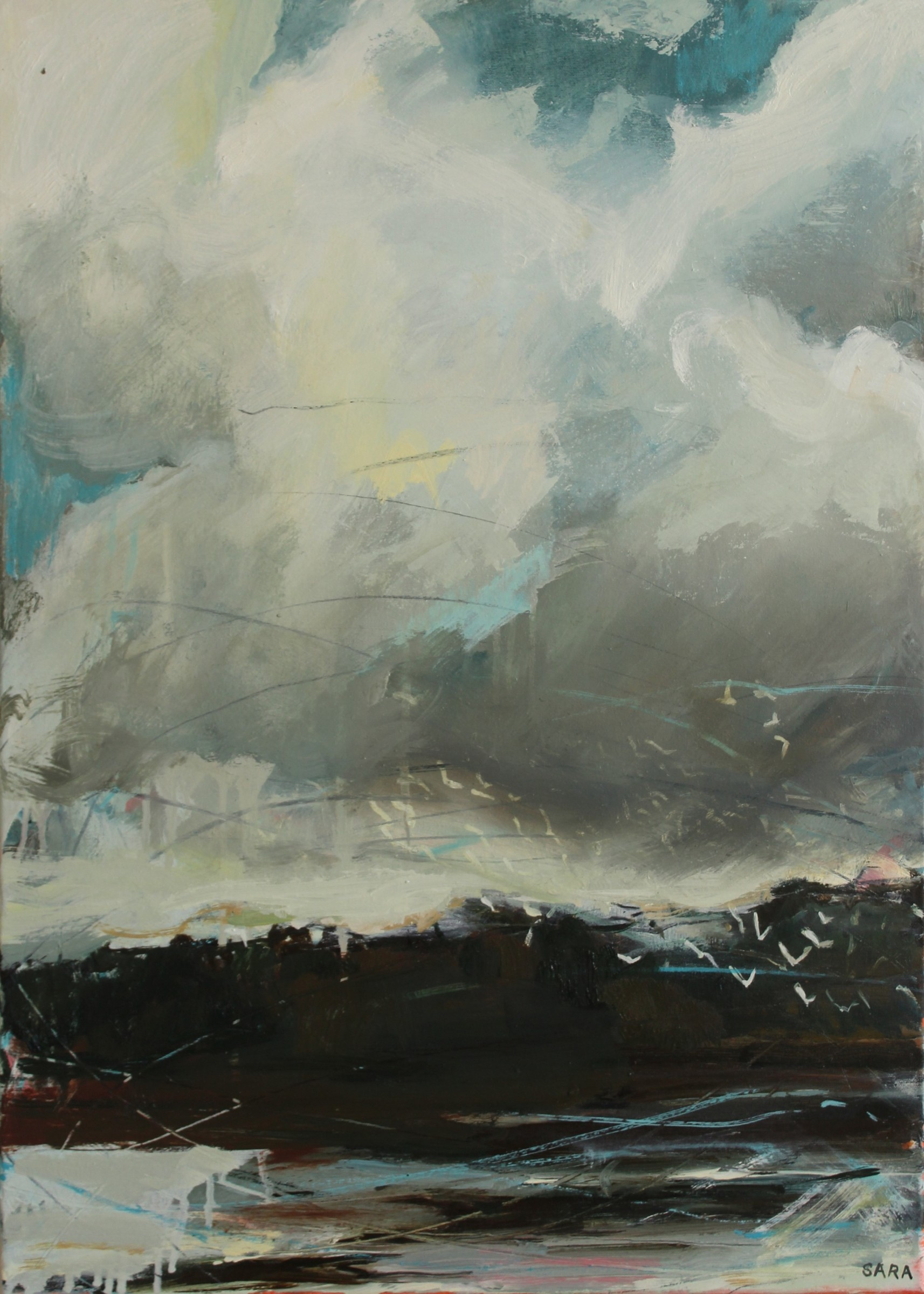 "<span class=""link fancybox-details-link""><a href=""/artists/159-sara-dudman-rwa/works/6558-sara-dudman-rwa-black-headed-gulls-hayle-estuary-2017/"">View Detail Page</a></span><div class=""artist""><strong>Sara Dudman RWA</strong></div> <div class=""title""><em>Black Headed Gulls (Hayle Estuary)</em>, 2017</div> <div class=""medium"">Oil on canvas</div> <div class=""dimensions"">h. 54 x w. 74 cm</div><div class=""price"">£850.00</div><div class=""copyright_line"">Ownart: £85 x 10 Months, 0 % APR</div>"