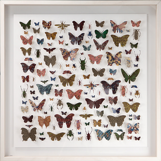 "<span class=""link fancybox-details-link""><a href=""/artists/142-helen-ward/works/3630-helen-ward-lepidoptera-2-2016/"">View Detail Page</a></span><div class=""artist""><strong>Helen Ward</strong></div> <div class=""title""><em>Lepidoptera 2</em>, 2016</div> <div class=""medium"">hand-cut Victorian hand-marbled paper, entomolgy pins</div> <div class=""dimensions"">h 80 x w 80 cm</div><div class=""copyright_line"">Own Art: £175 x 10 Monthly 0% APR Representative Payments</div>"