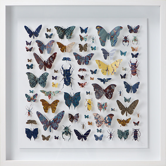 "<span class=""link fancybox-details-link""><a href=""/artists/142-helen-ward/works/3631-helen-ward-lepidoptera-3-2016/"">View Detail Page</a></span><div class=""artist""><strong>Helen Ward</strong></div> <div class=""title""><em>Lepidoptera 3</em>, 2016</div> <div class=""medium"">hand-cut Victorian hand-marbled paper, entomolgy pins</div> <div class=""dimensions"">h 63 x w 63 cm</div><div class=""copyright_line"">Own Art: £ 98 x 10 Monthly 0% APR Representative Payments</div>"