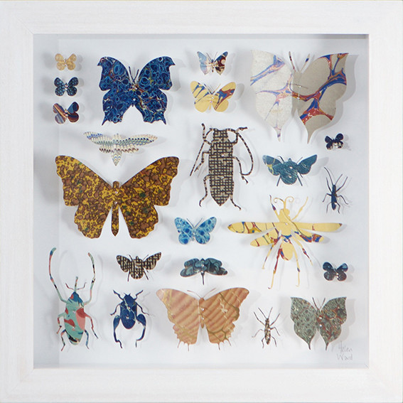 "<span class=""link fancybox-details-link""><a href=""/artists/142-helen-ward/works/3635-helen-ward-lepidoptera-7-2016/"">View Detail Page</a></span><div class=""artist""><strong>Helen Ward</strong></div> <div class=""title""><em>Lepidoptera 7</em>, 2016</div> <div class=""medium"">hand-cut Victorian hand-marbled paper, entomolgy pins</div> <div class=""dimensions"">h 29 x w 29 cm</div><div class=""copyright_line"">Own Art: £ 32 x 10 Monthly 0% APR Representative Payments</div>"