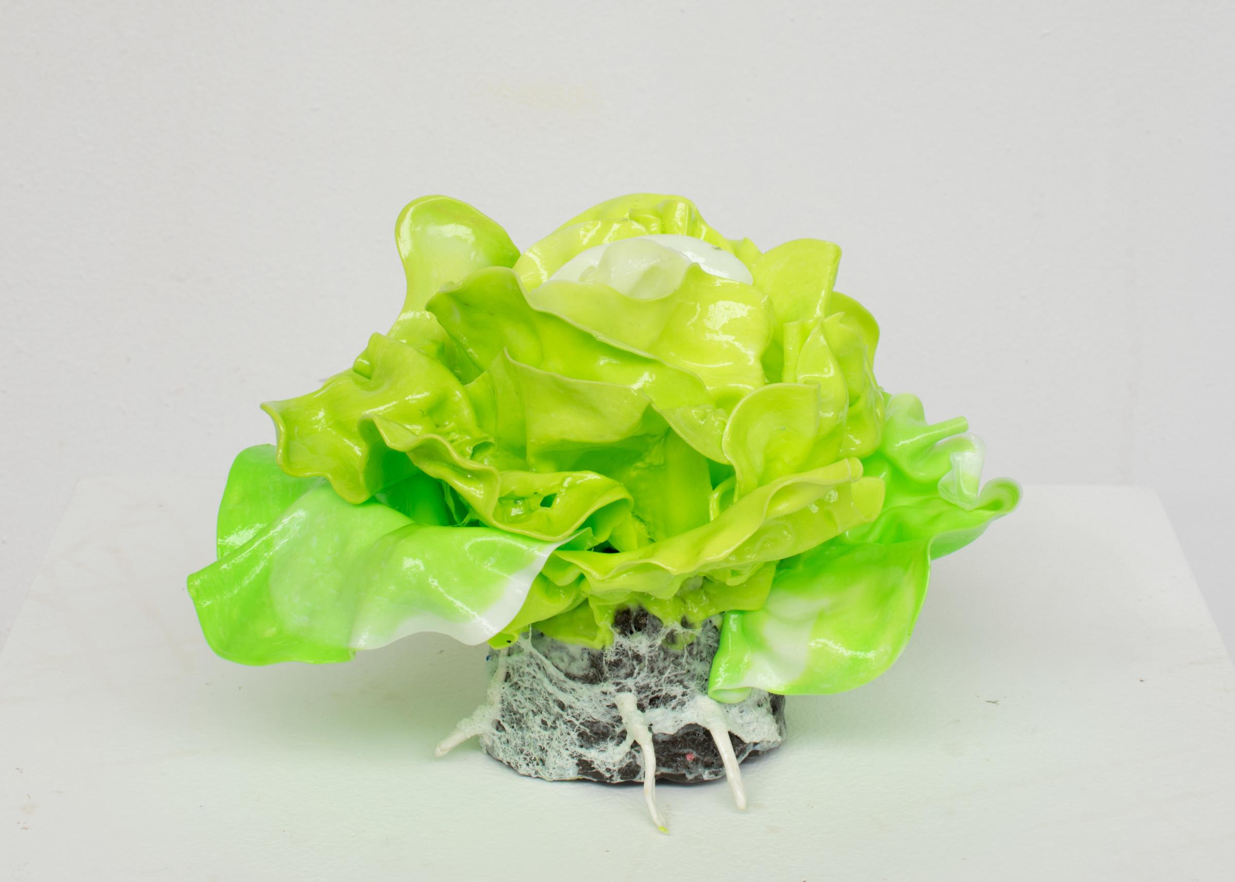 "<span class=""link fancybox-details-link""><a href=""/artists/42-stefan-gross/works/5379-stefan-gross-lettuce-small-2019/"">View Detail Page</a></span><div class=""artist""><strong>Stefan Gross</strong></div> <div class=""title""><em>Lettuce small</em>, 2019</div> <div class=""medium"">Oil plastic</div> <div class=""dimensions"">25 x 25 x 25 cm<br /> 10 x 10 x 10 in</div><div class=""price"">€1,500.00</div>"