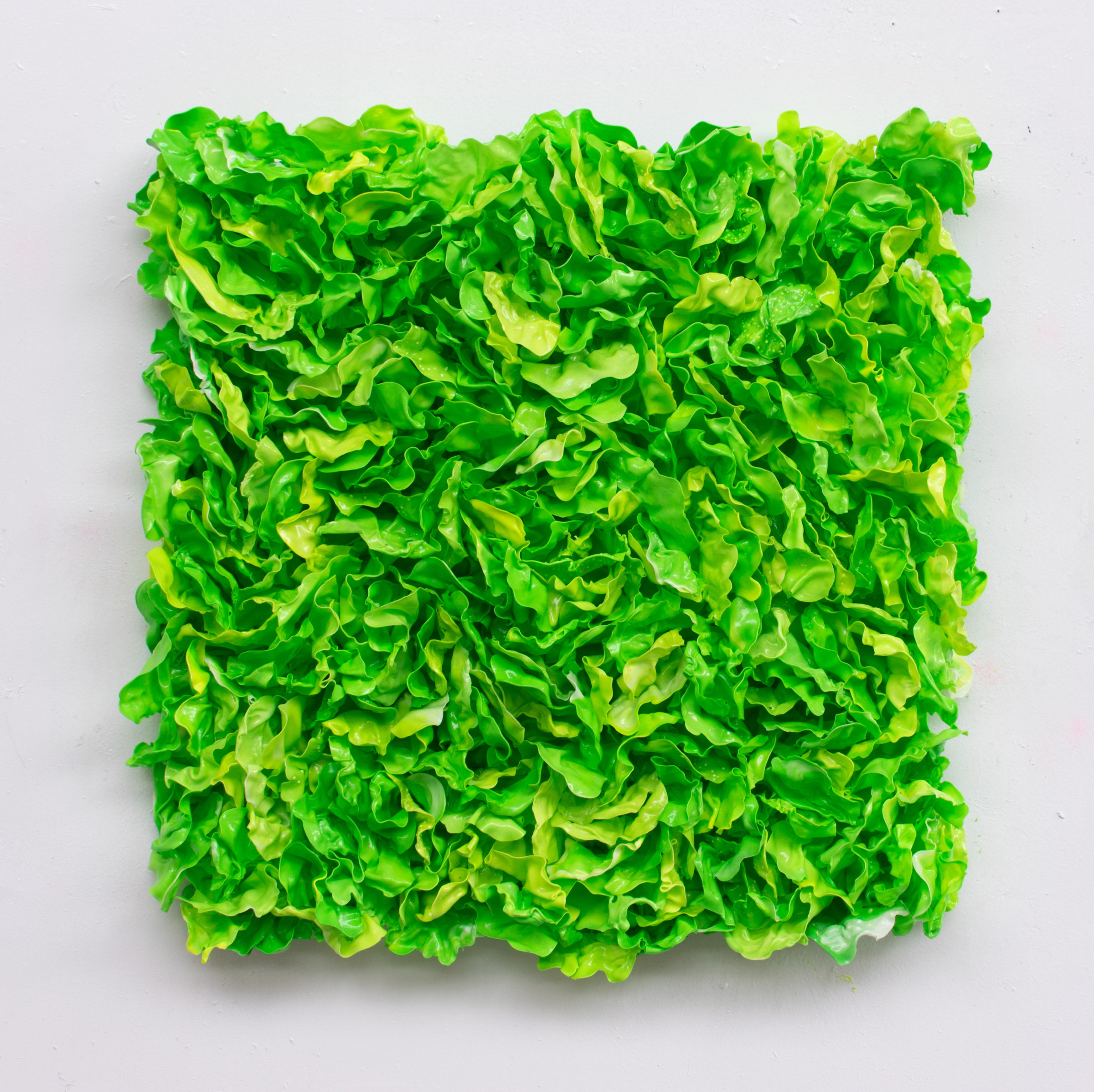 "<span class=""link fancybox-details-link""><a href=""/artists/42-stefan-gross/works/5381-stefan-gross-lettuce-i-2019/"">View Detail Page</a></span><div class=""artist""><strong>Stefan Gross</strong></div> <div class=""title""><em>Lettuce - I</em>, 2019</div> <div class=""medium"">Oil plastic</div> <div class=""dimensions"">100 x 100 x 20 cm</div><div class=""price"">€8,500.00</div>"