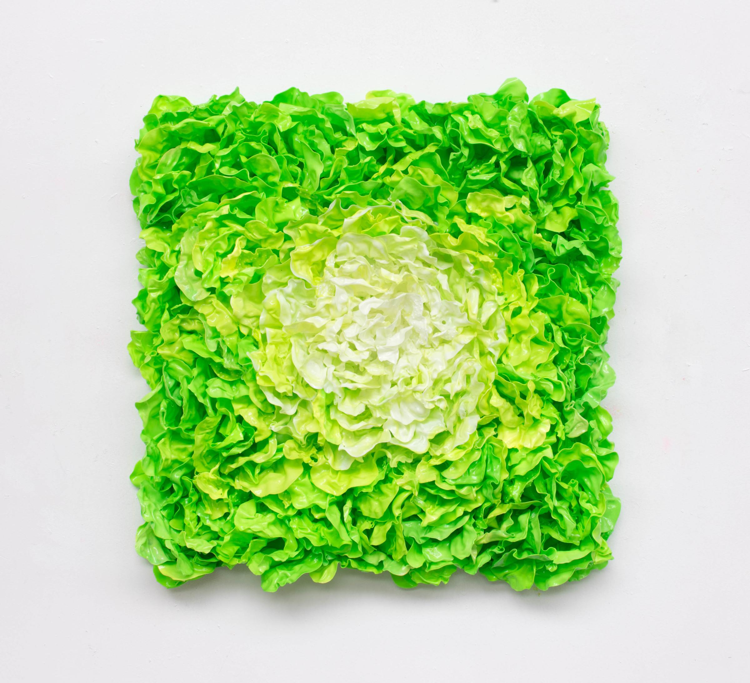 "<span class=""link fancybox-details-link""><a href=""/artists/42-stefan-gross/works/5313-stefan-gross-lettuce-ii-2019/"">View Detail Page</a></span><div class=""artist""><strong>Stefan Gross</strong></div> <div class=""title""><em>Lettuce - II</em>, 2019</div> <div class=""medium"">Oil Plastic</div> <div class=""dimensions"">100 x 100 x 20 cm</div><div class=""price"">€8,500.00</div>"