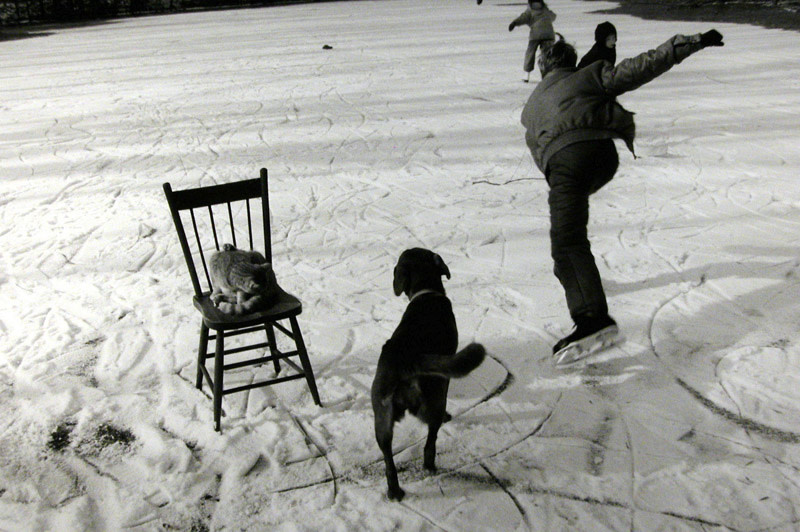 """<span class=""""link fancybox-details-link""""><a href=""""/artists/110/series/the-world-from-my-front-porch/6432-larry-towell-the-skating-pond-lambton-county-ontario-canada-1992/"""">View Detail Page</a></span><div class=""""artist""""><strong>Larry Towell</strong></div> b. 1953 <div class=""""title""""><em>The Skating Pond, Lambton County, Ontario, Canada</em>, 1992</div> <div class=""""signed_and_dated"""">Artist's blindstamp, au recto<br /> Signed, titled, and dated, in pencil, au verso<br /> Printed in 1996<br /> </div> <div class=""""medium"""">Gelatin silver print</div> <div class=""""dimensions"""">16 x 20 inch (40.64 x 50.80 cm)</div><div class=""""copyright_line"""">© Larry Towell / Magnum Photos</div>"""