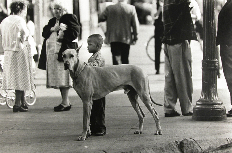 "<span class=""link fancybox-details-link""><a href=""/artists/63-george-s.-zimbel/works/17351-george-s.-zimbel-black-boy-and-great-dane-harlem-1964/"">View Detail Page</a></span><div class=""artist""><strong>George S. Zimbel</strong></div> b. 1929 <div class=""title""><em>Black Boy and Great Dane, Harlem</em>, 1964</div> <div class=""signed_and_dated"">Signed, titled, and dated, in pencil, au verso<br /> Artist Ref# 868<br /> Printed in 1964</div> <div class=""medium"">Gelatin silver print</div> <div class=""dimensions"">11 ¾ x 17 ¼ inch (29.85 x 43.82 cm) image<br /> 16 x 20 inch (40.64 x 50.80 cm) paper</div> <div class=""edition_details""></div><div class=""copyright_line""> </div>"