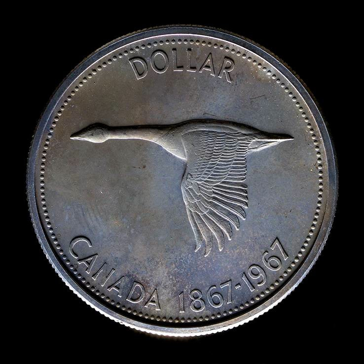 "<span class=""link fancybox-details-link""><a href=""/artists/89/series/colville-coins/19973-william-eakin-colville-goose-6179-silver-dollar-2013/"">View Detail Page</a></span><div class=""artist""><strong>William Eakin</strong></div> b. 1952 <div class=""title""><em>Colville goose 6179 (silver dollar)</em>, 2013</div> <div class=""signed_and_dated"">Signed, titled, dated, and editioned, in ink, au mount verso<br /> Printed in 2014</div> <div class=""medium"">Pigment print on archival paper flush mounted to archival board</div> <div class=""dimensions"">40 x 40 inch (101.6 x 101.6 cm)</div> <div class=""edition_details"">Edition of 5 (#2/5)</div><div class=""copyright_line""> </div>"