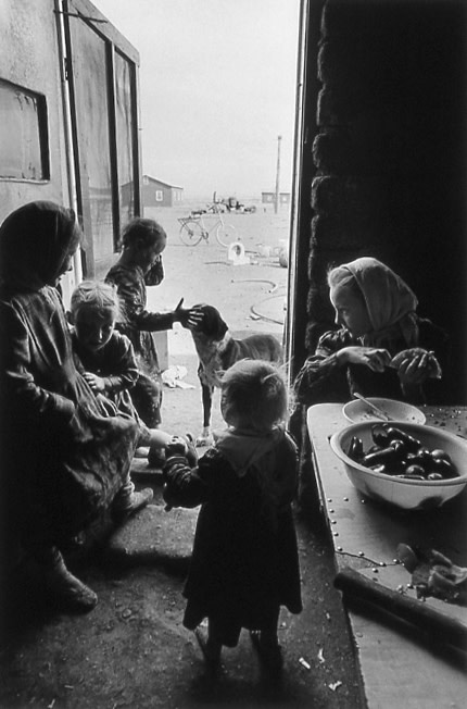 """<span class=""""link fancybox-details-link""""><a href=""""/artists/110-larry-towell/works/19592-larry-towell-el-cuervo-casa-colonies-mennonites-chihuahua-1997/"""">View Detail Page</a></span><div class=""""artist""""><strong>Larry Towell</strong></div> b. 1953 <div class=""""title""""><em>El Cuervo, Casa Colonies, Mennonites, Chihuahua</em>, 1997</div> <div class=""""signed_and_dated"""">Artist's blindstamp, au recto<br /> Signed, titled, and dated, in pencil, au verso<br /> Printed in 1998</div> <div class=""""medium"""">Gelatin silver print</div> <div class=""""dimensions"""">12 ½ x 18 ¼ inch (31.75 x 46.36 cm) image<br /> 16 x 20 inch (40.64 x 50.8 cm) paper</div> <div class=""""edition_details""""></div><div class=""""copyright_line"""">© Larry Towell / Magnum Photos</div>"""