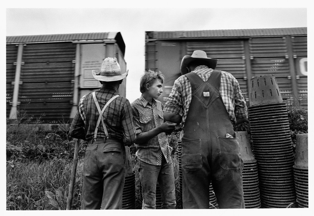 """<span class=""""link fancybox-details-link""""><a href=""""/artists/110-larry-towell/works/35006-larry-towell-lambton-county-ontario-canada-1990/"""">View Detail Page</a></span><div class=""""artist""""><strong>Larry Towell</strong></div> b. 1953 <div class=""""title""""><em>Lambton County, Ontario, Canada</em>, 1990</div> <div class=""""signed_and_dated"""">Artist blindstamp, au recto<br /> Signed, titled, and dated, in pencil, au verso<br /> Printed in 1997</div> <div class=""""medium"""">Gelatin silver print</div> <div class=""""dimensions"""">8 ½ x 12 ¾ inch (21.59 x 32.39 cm) image<br /> 10 ¾ x 13 ¾ inch (27.31 x 34.93 cm) paper</div> <div class=""""edition_details""""></div><div class=""""copyright_line"""">© Larry Towell / Magnum Photos</div>"""