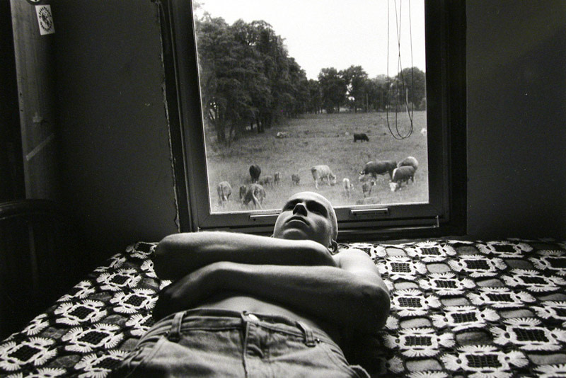 """<span class=""""link fancybox-details-link""""><a href=""""/artists/110-larry-towell/works/14255-larry-towell-moses-and-cows-lambton-county-ontario-canada-1995/"""">View Detail Page</a></span><div class=""""artist""""><strong>Larry Towell</strong></div> b. 1953 <div class=""""title""""><em>Moses and Cows, Lambton County, Ontario, Canada</em>, 1995</div> <div class=""""signed_and_dated"""">Signed, titled, and dated, in pencil, au verso<br /> Printed in 2005</div> <div class=""""medium"""">Gelatin silver print</div> <div class=""""dimensions"""">11 x 14 inch (27.94 x 35.56 cm)</div> <div class=""""edition_details""""></div><div class=""""copyright_line"""">© Larry Towell / Magnum Photos</div>"""