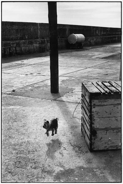 "<span class=""link fancybox-details-link""><a href=""/artists/65-elliott-erwitt/works/16145-elliott-erwitt-ballycotton-ireland-1968/"">View Detail Page</a></span><div class=""artist""><strong>Elliott Erwitt</strong></div> b. 1928 <div class=""title""><em>Ballycotton, Ireland</em>, 1968</div> <div class=""signed_and_dated"">Signed, in ink, au recto<br /> Signed, titled and dated, in pencil, au verso<br /> Artists ref # 68-1-53/28 </div> <div class=""medium"">Gelatin silver print</div> <div class=""dimensions"">12 x 18 inch (30.48 x 45.72 cm) image<br /> 16 x 20 inch (40.64 x  50.80 cm) paper</div><div class=""copyright_line"">© Elliott Erwitt / Magnum Photos</div>"