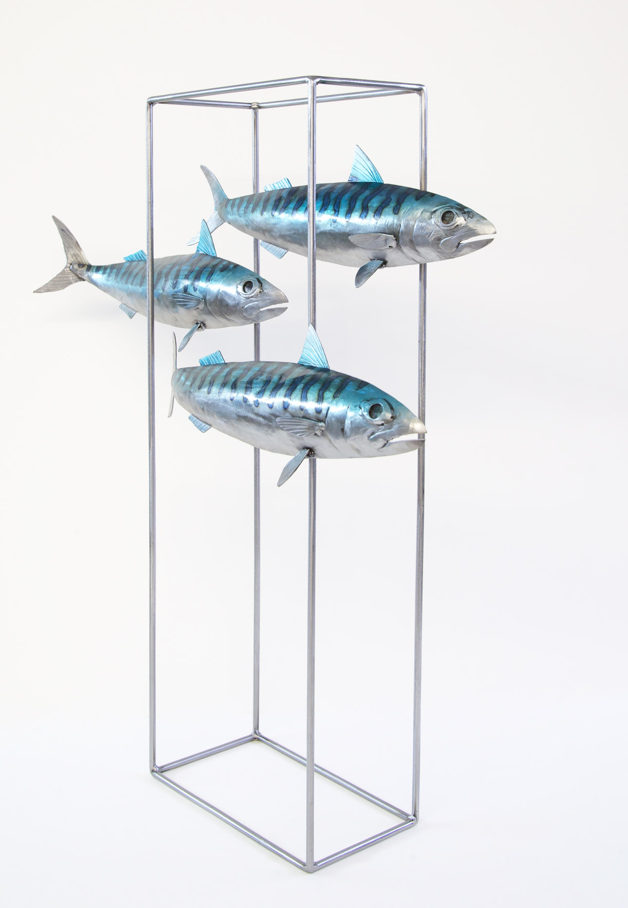 Kerry Whittle, Three Fish in Frame | Sculpture | Whitewater Gallery