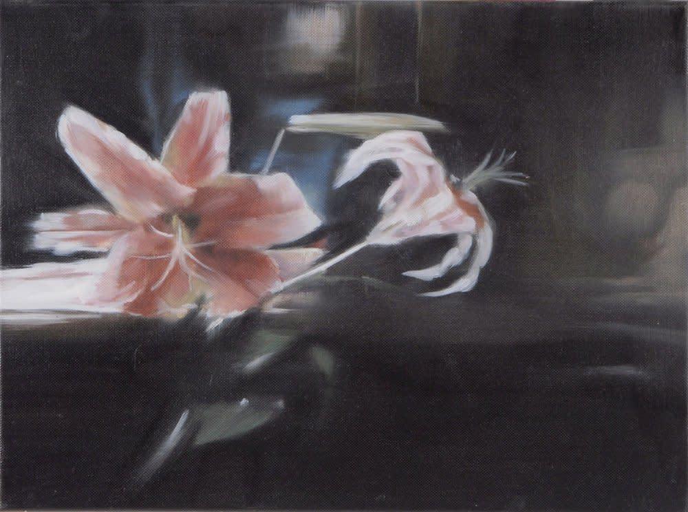 <span class=&#34;link fancybox-details-link&#34;><a href=&#34;/artists/14-rachel-lancaster/works/736/&#34;>View Detail Page</a></span><div class=&#34;artist&#34;><strong>Rachel Lancaster</strong></div> <div class=&#34;title&#34;><em>Orchids</em>, 2007</div> <div class=&#34;medium&#34;>Oil on Canvas</div> <div class=&#34;dimensions&#34;>30 x 40 cms<br />11.82 x 15.76 inches</div><div class=&#34;copyright_line&#34;>Copyright The Artist</div>