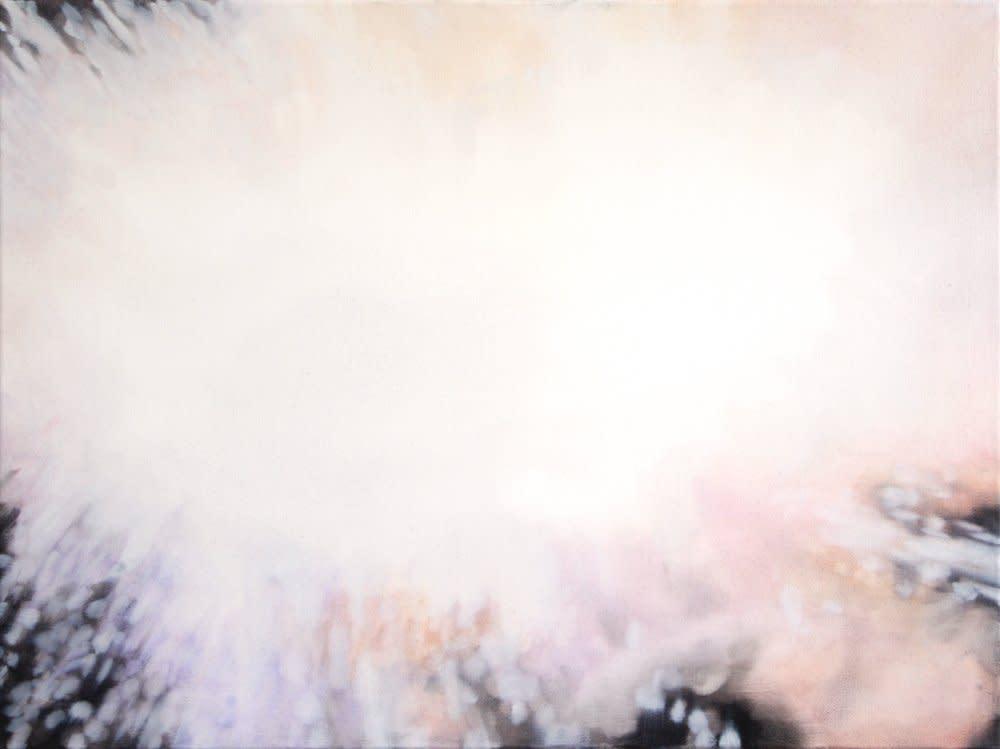 <span class=&#34;link fancybox-details-link&#34;><a href=&#34;/artists/14-rachel-lancaster/works/1986/&#34;>View Detail Page</a></span><div class=&#34;artist&#34;><strong>Rachel Lancaster</strong></div> <div class=&#34;title&#34;><em>Explosion</em>, 2008</div> <div class=&#34;medium&#34;>Oil on Canvas</div> <div class=&#34;dimensions&#34;>45 x 60 cms<br />17.73 x 23.64 inches</div><div class=&#34;copyright_line&#34;>Copyright The Artist</div>