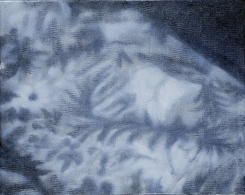 <span class=&#34;link fancybox-details-link&#34;><a href=&#34;/artists/14-rachel-lancaster/works/1633/&#34;>View Detail Page</a></span><div class=&#34;artist&#34;><strong>Rachel Lancaster</strong></div> <div class=&#34;title&#34;><em>Carpet</em>, 2007</div> <div class=&#34;medium&#34;>Oil on Canvas</div> <div class=&#34;dimensions&#34;>40 x 50 cms<br />15.76 x 19.7 inches</div><div class=&#34;copyright_line&#34;>Copyright The Artist</div>