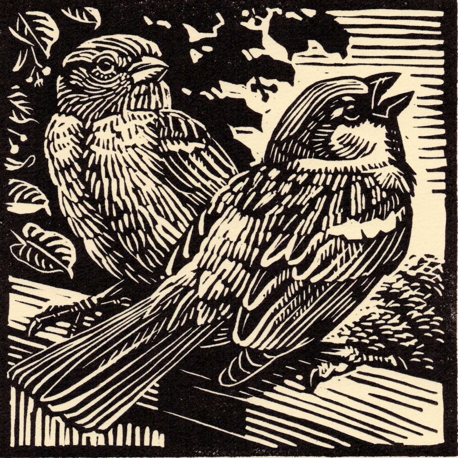 "<span class=""link fancybox-details-link""><a href=""/exhibitions/17/works/image_standalone618/"">View Detail Page</a></span><p><strong>Richard Allen</strong></p><p>House Sparrows</p><p>linocut, ed of 50</p><p>31 x 31cm</p><p>£145 framed</p><p>£95 unframed</p>"