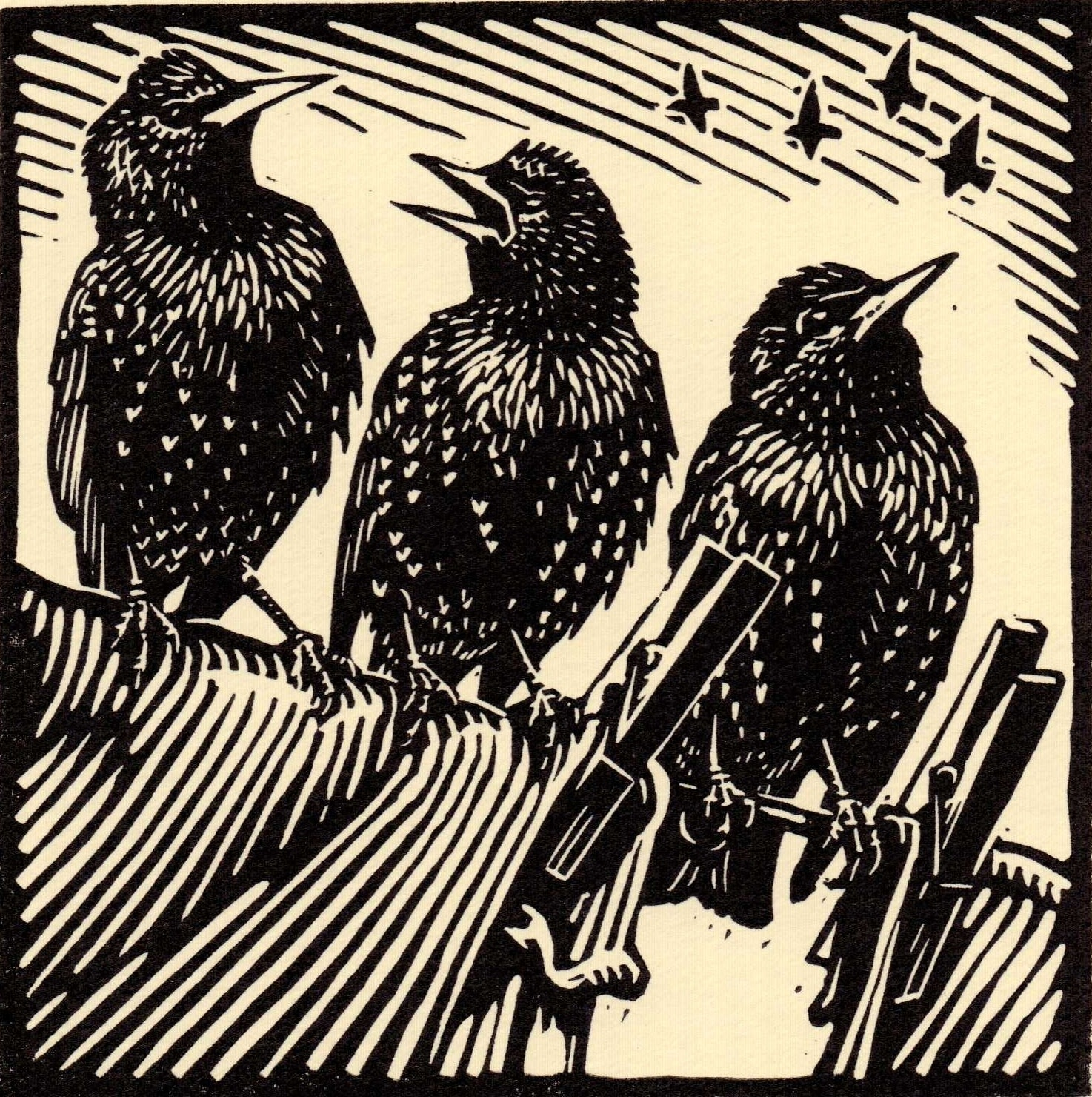 "<span class=""link fancybox-details-link""><a href=""/exhibitions/17/works/image_standalone621/"">View Detail Page</a></span><p><strong>Richard Allen</strong></p><p>Starlings</p><p>linocut, ed of 50</p><p>31 x 31cm</p><p>£145 framed</p><p>£95 unframed</p>"