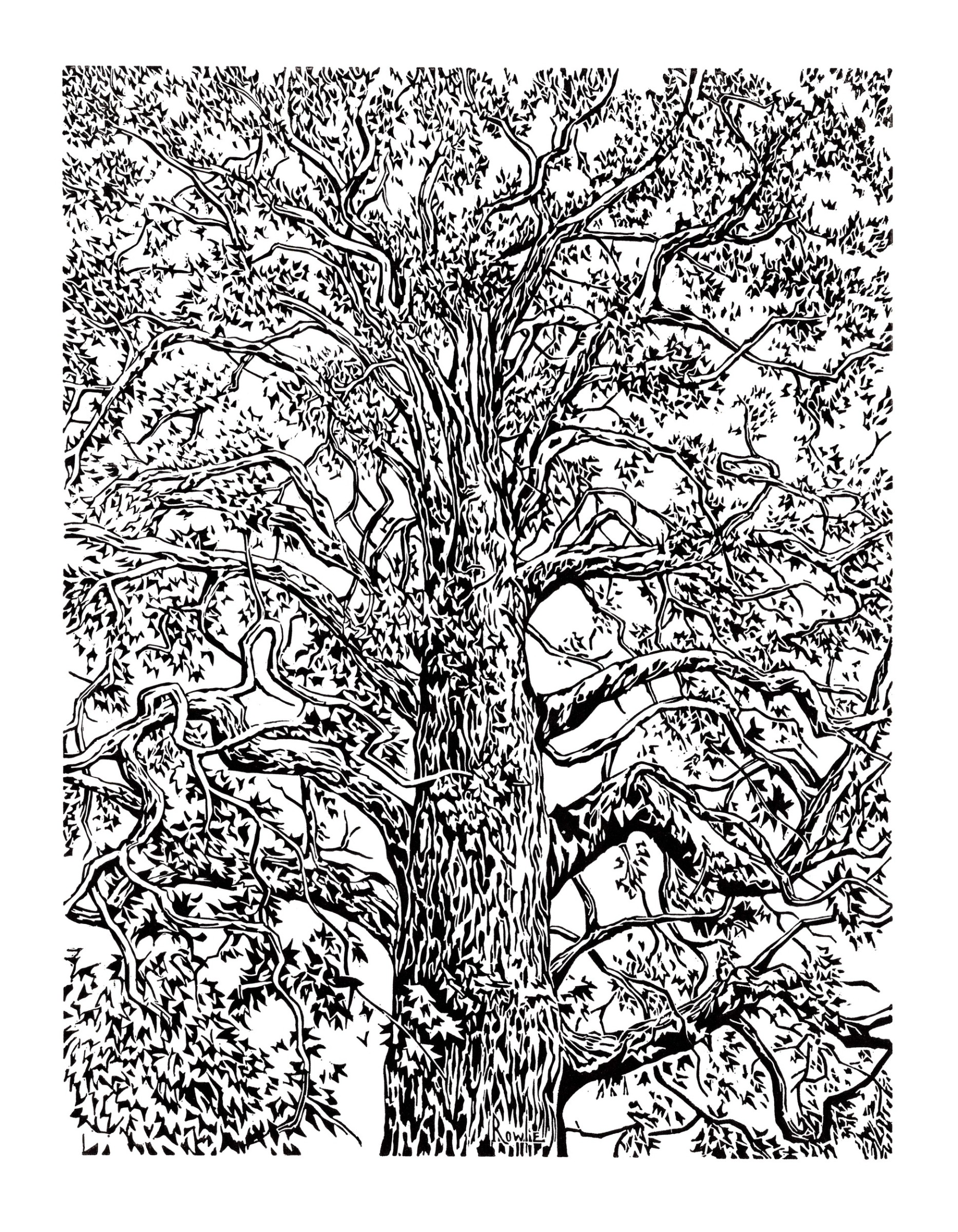 "<span class=""link fancybox-details-link""><a href=""/exhibitions/17/works/image_standalone638/"">View Detail Page</a></span><p><strong>Rowland Bellasis</strong></p><p>Plane Tree</p><p>linocut, ed of 100</p><p>60 x 45cm</p><p>£250 framed</p><p>£170 unframed</p>"