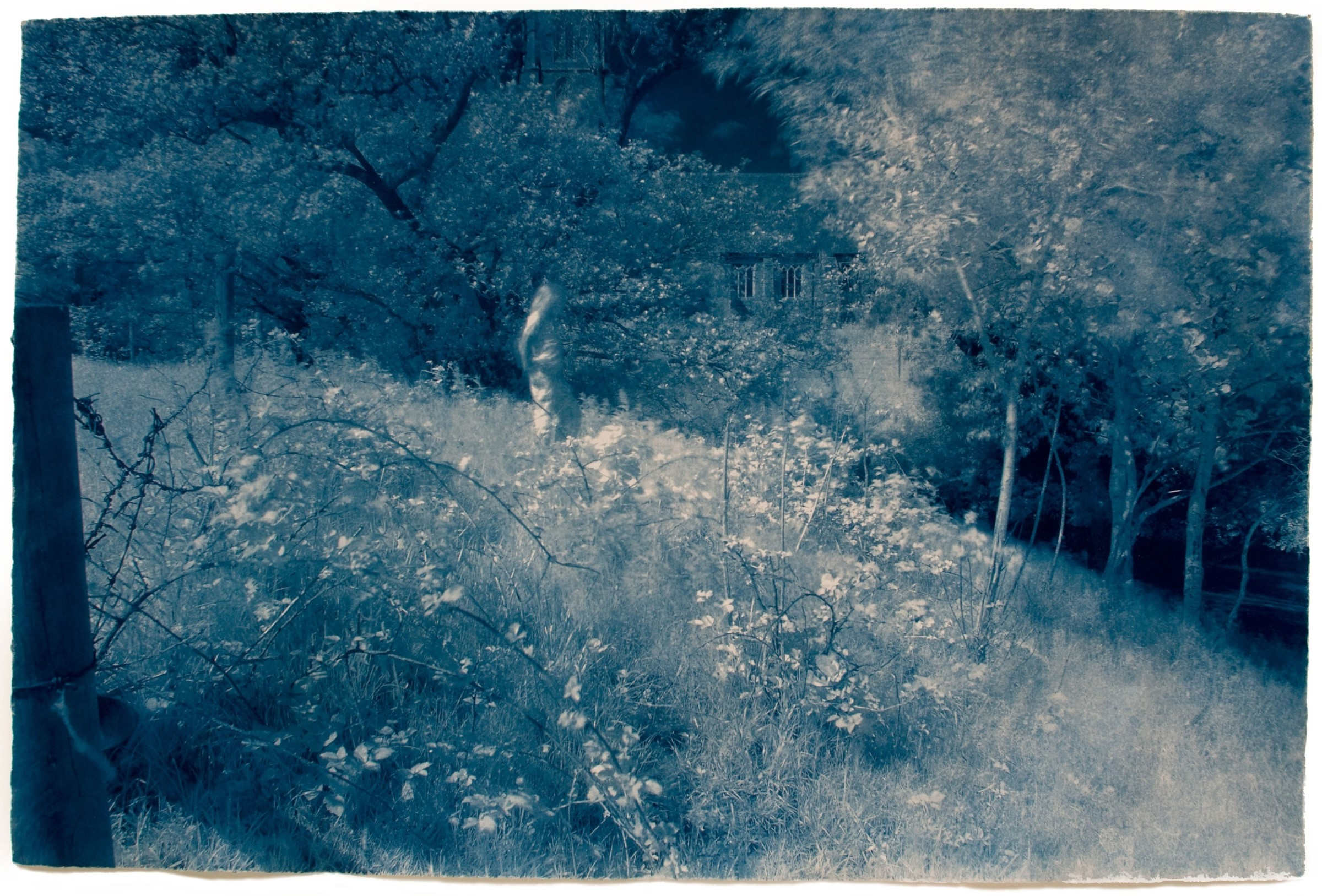 "<span class=""link fancybox-details-link""><a href=""/exhibitions/17/works/image_standalone696/"">View Detail Page</a></span><p><strong>Martyn Grimmer</strong></p><p>Tales from the Riverbank 1</p><p>cyanotype, ed of 30</p><p>89 x 63cm</p><p>£575 framed</p><p>£375 unframed</p>"